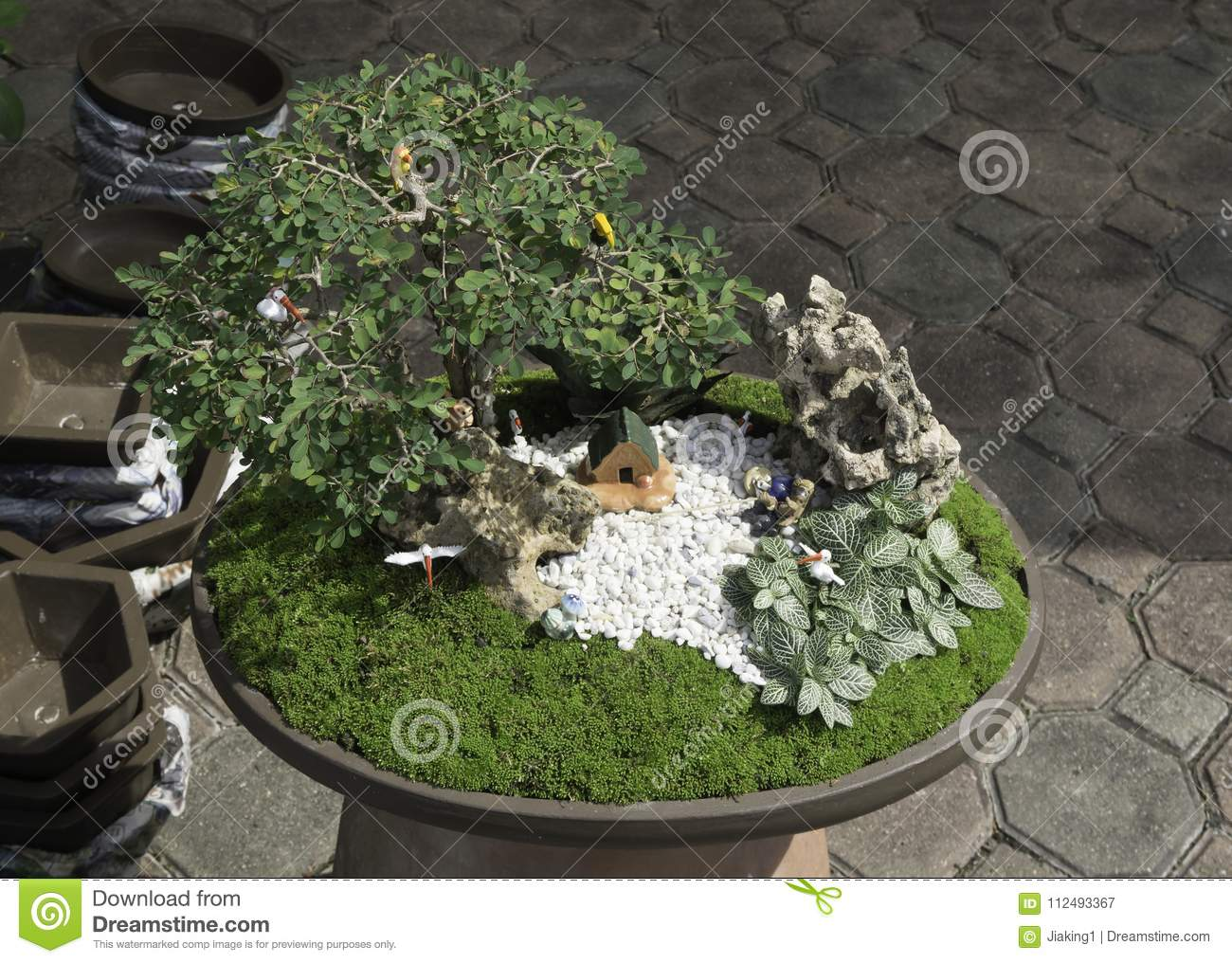 Small Garden Design With Home In Pot Stock Image Image Of Bird Animal 112493367
