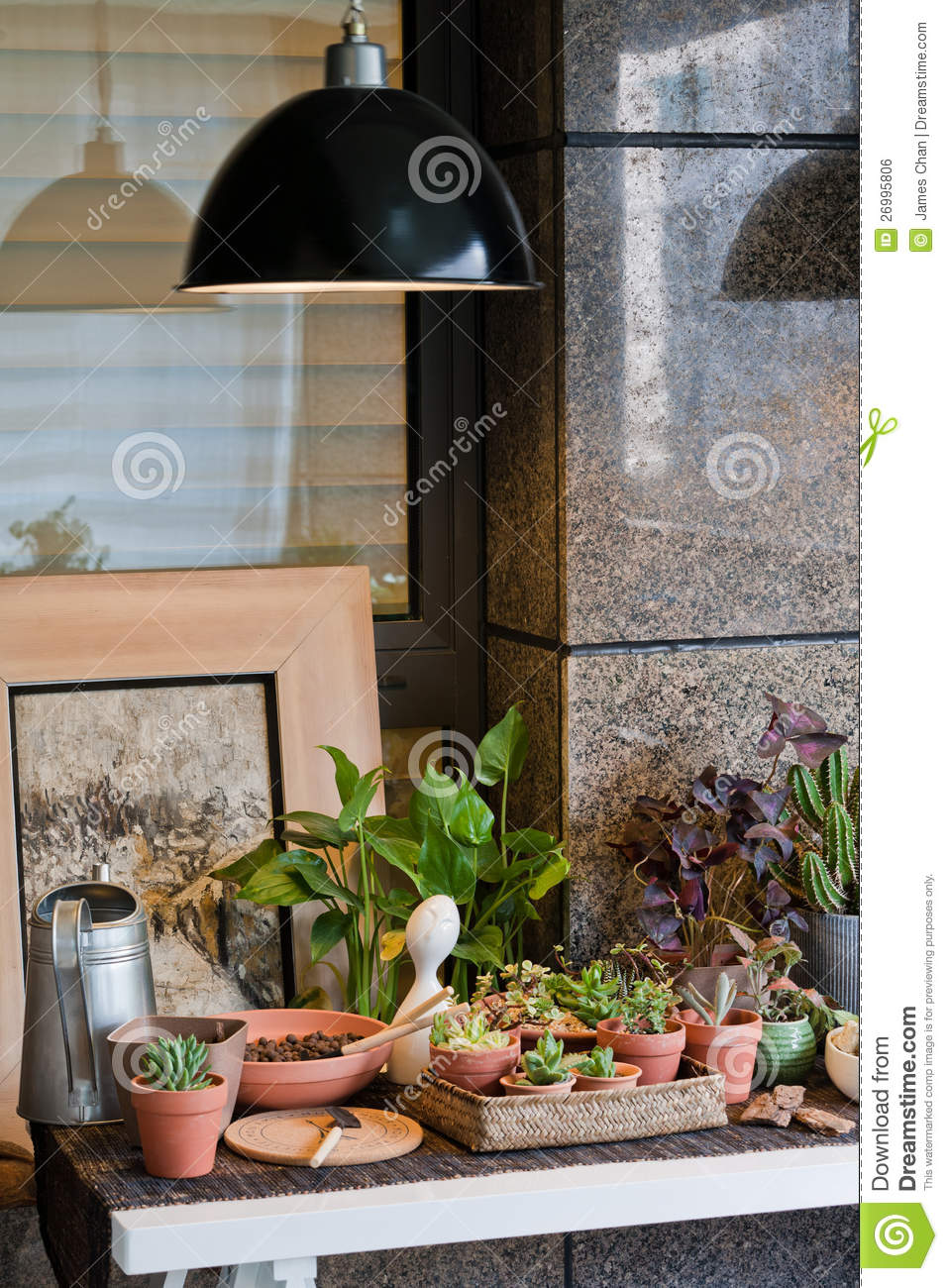 Small Garden Potted Plants Stock Photo Image Of Gallery 26995806