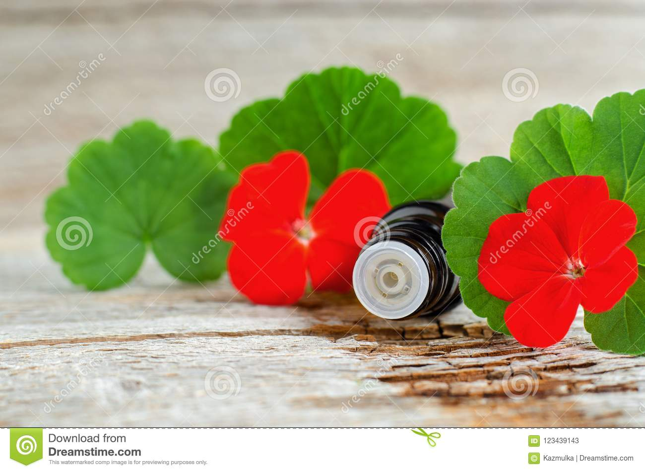 Small glass bottle with essential geranium oil on the old wooden background. Geranium leaves and flowers, close up.