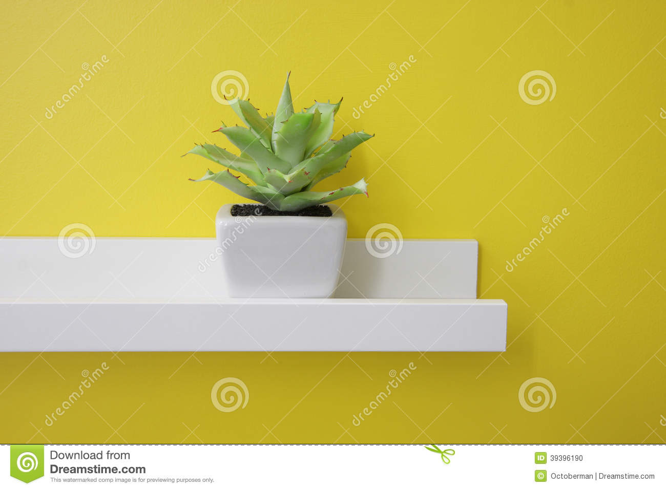 A Small Green Plant On A White Shelf, Yellow Wall Stock Photo - Image: 39396190