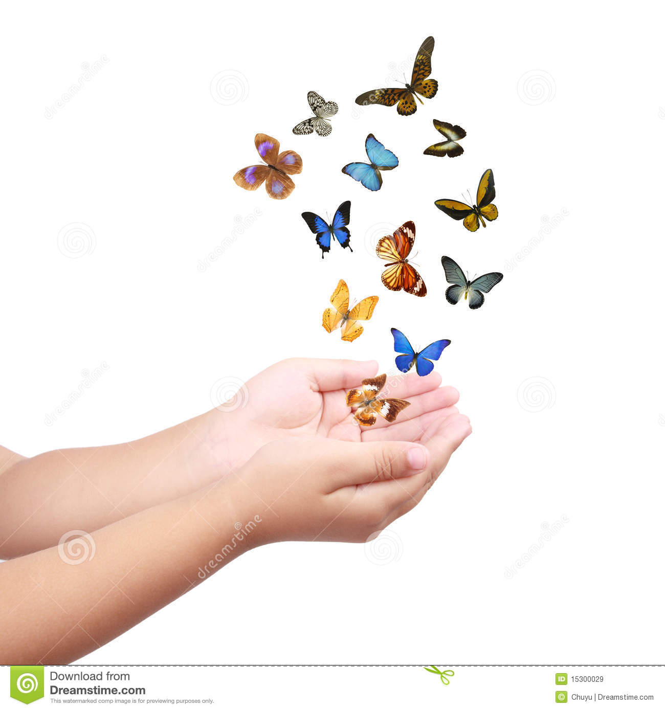 small hand releasing butterflies  flying dreams stock image image 15300029 vector butterfly png vector butterfly png