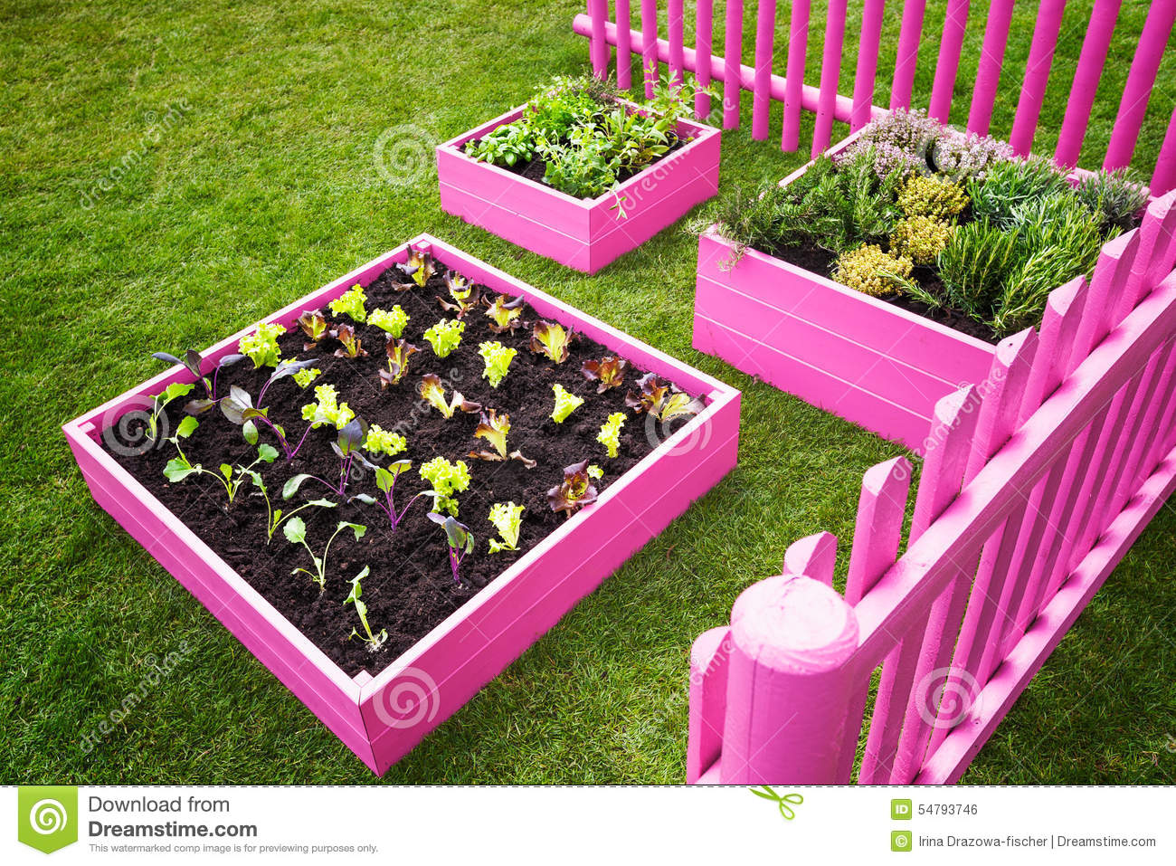Small Herb Garden Stock Photo Image 54793746
