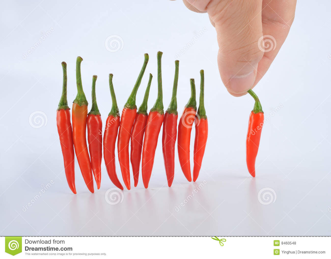 Small Hot Pepper Stock Photo Image Of Dried, Kitchen - 8460548-2575