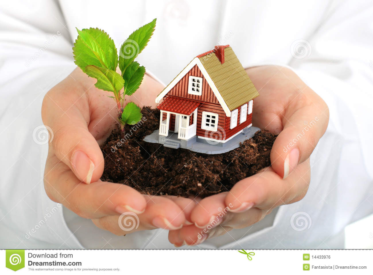 Small house and plant in hands.
