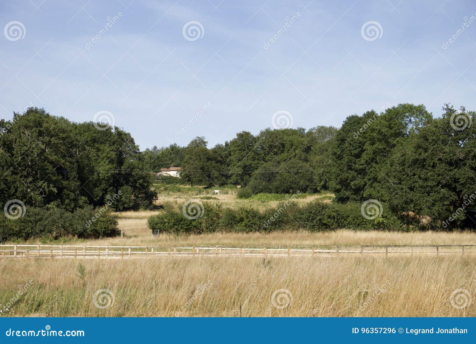 A small house in a prairie