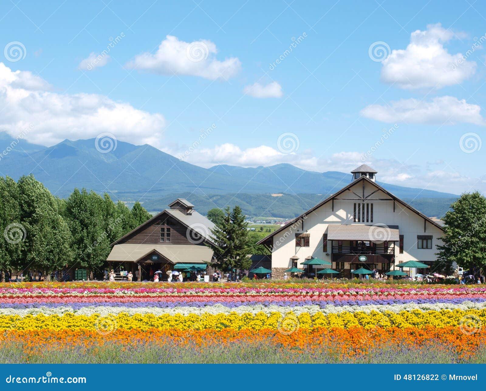 Small Houses At Tomita Farm In Furano Hokkaido Japan