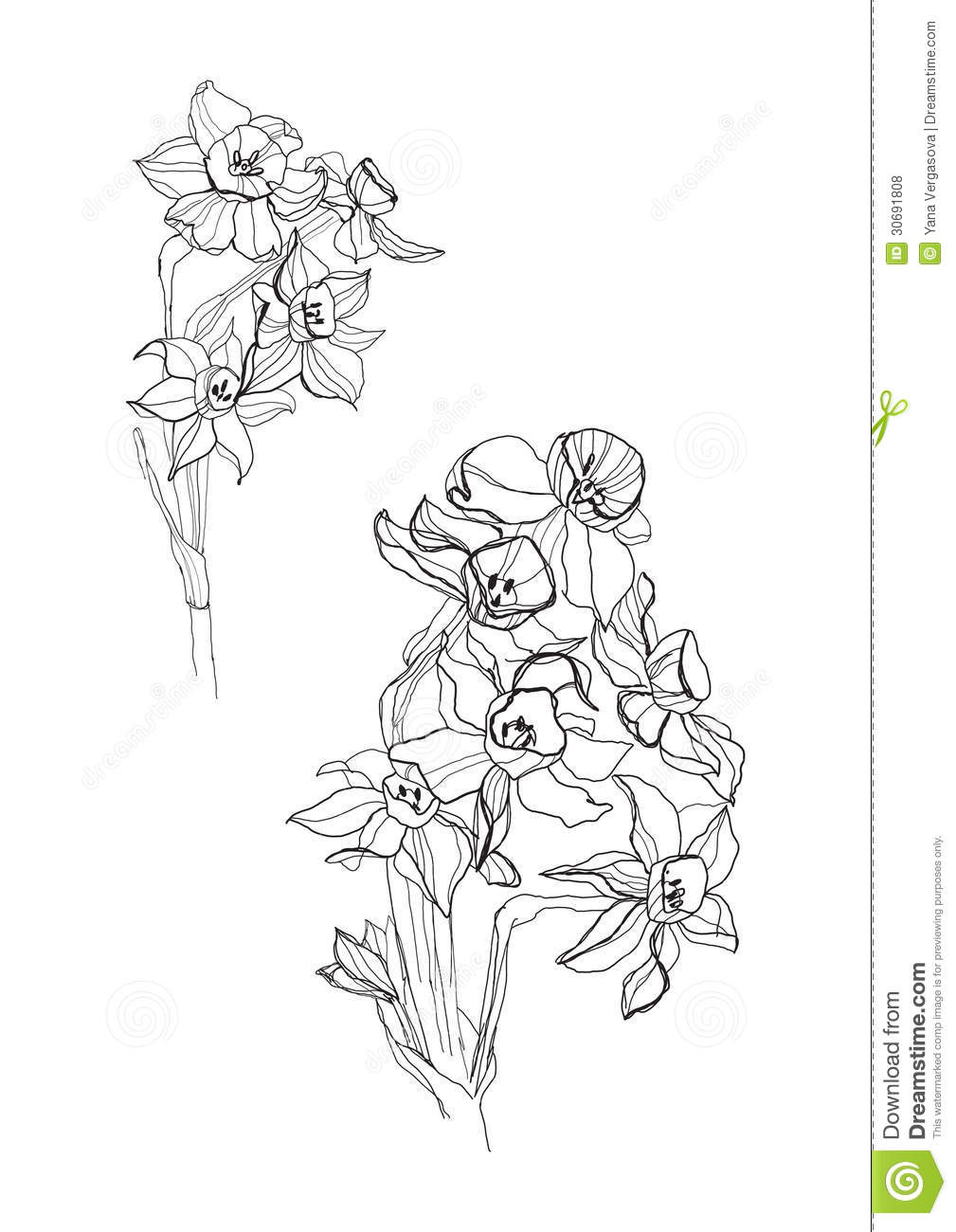 It is a photo of Lucrative Small Flower Drawing