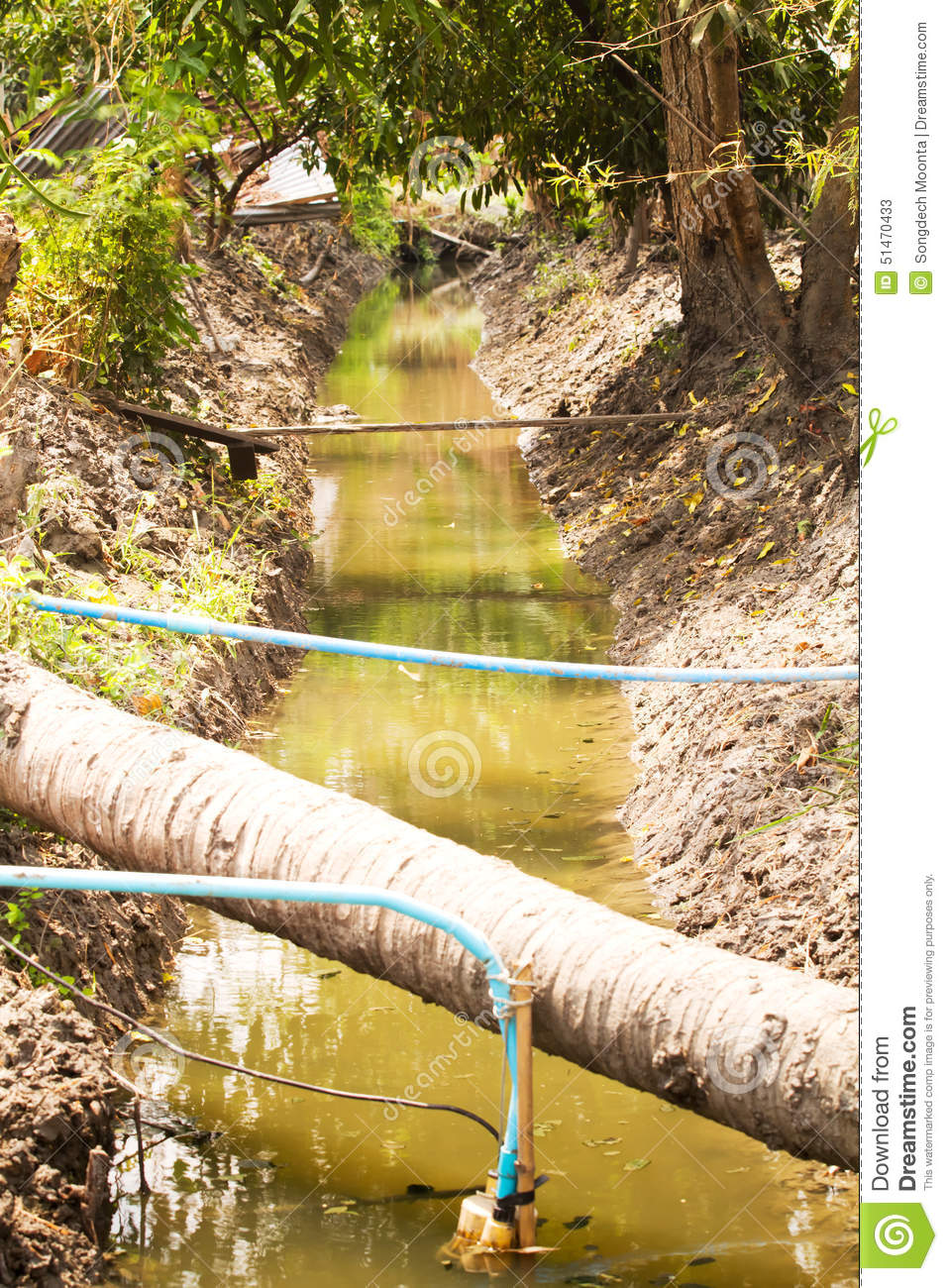 Small Irrigation Canal Stock Photo - Image 51470433