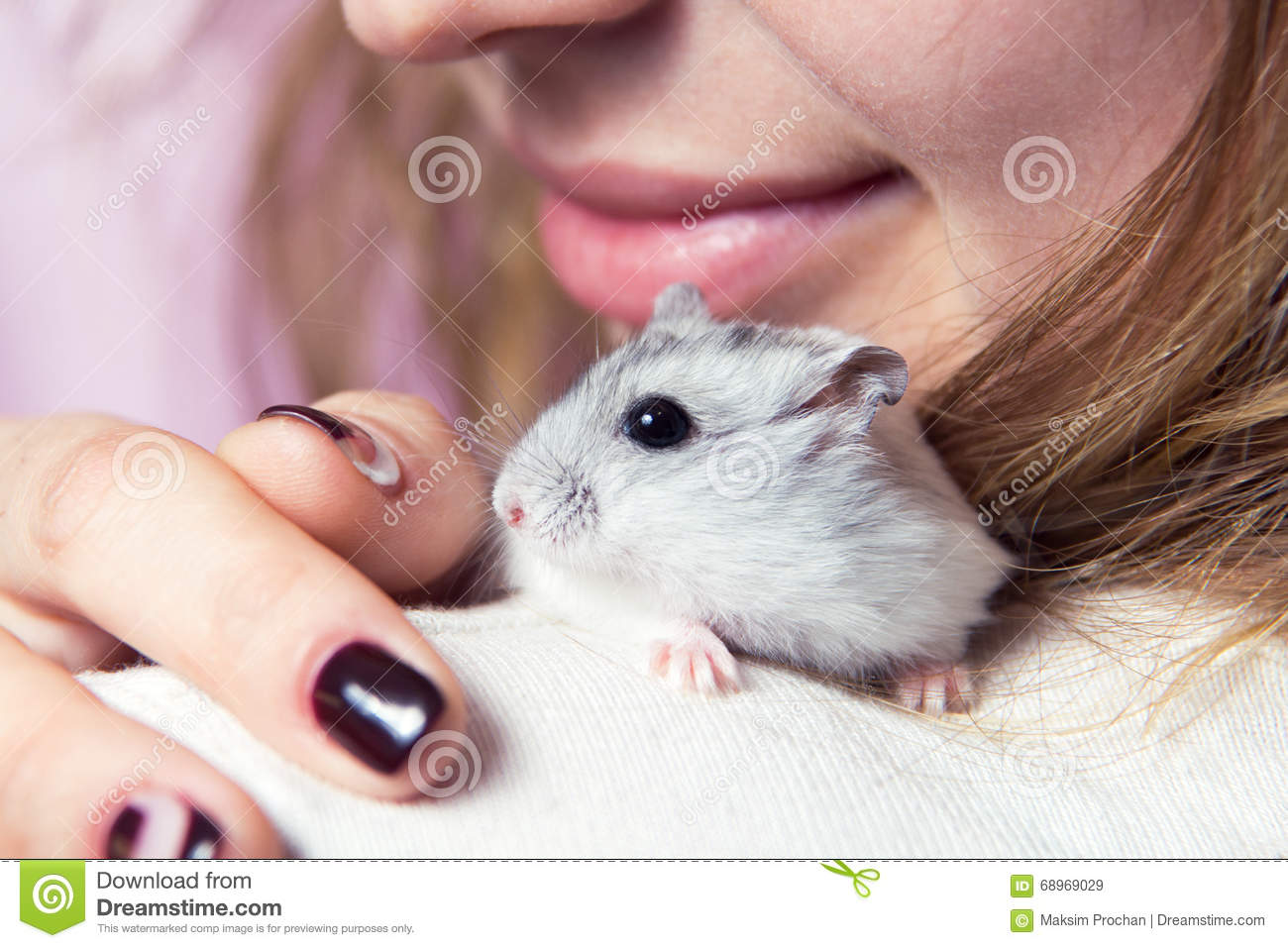 How to care for the Jungar hamster 37