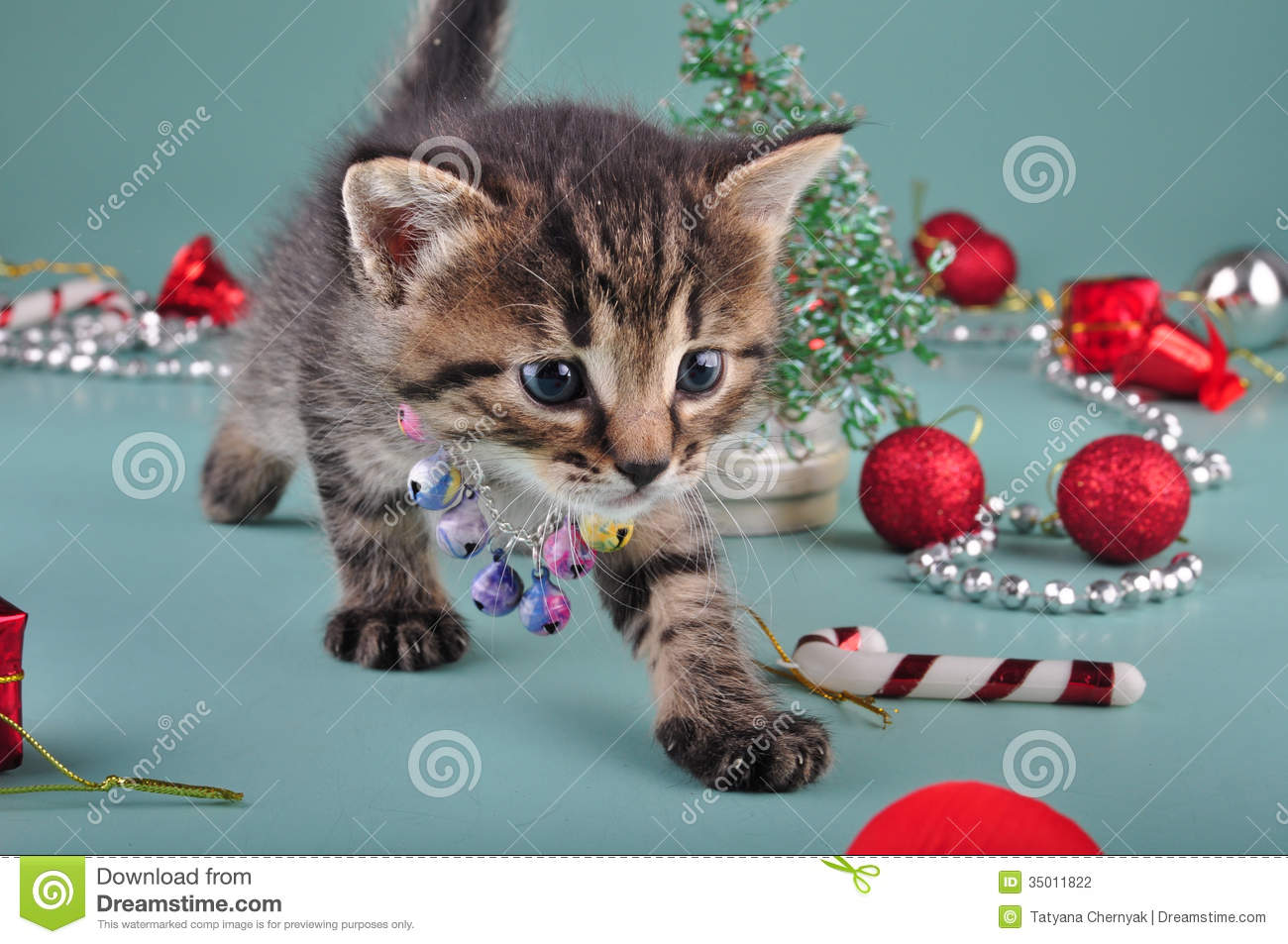 how to stop kitten from christmas tree