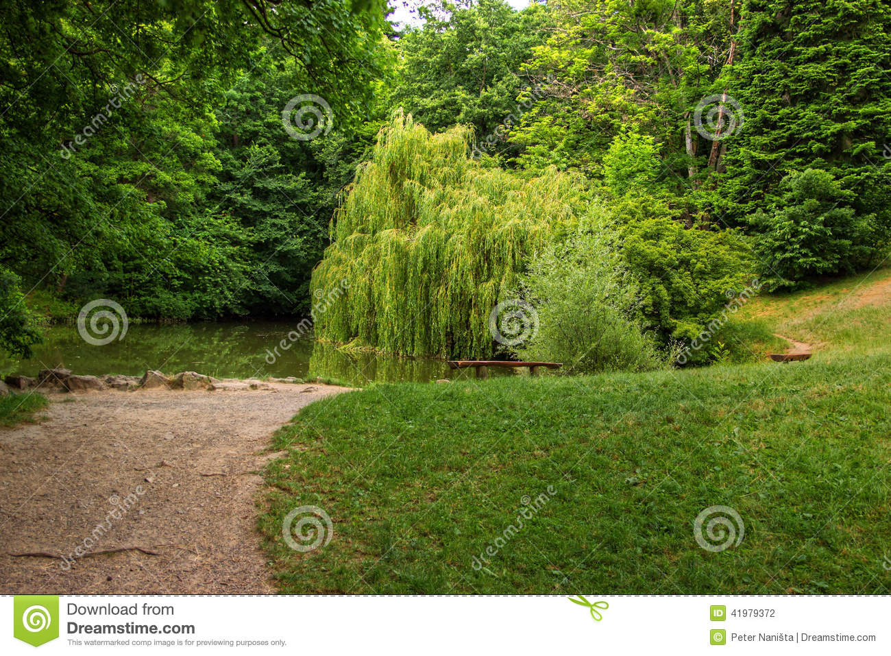 Small Lake with Weeping Willow