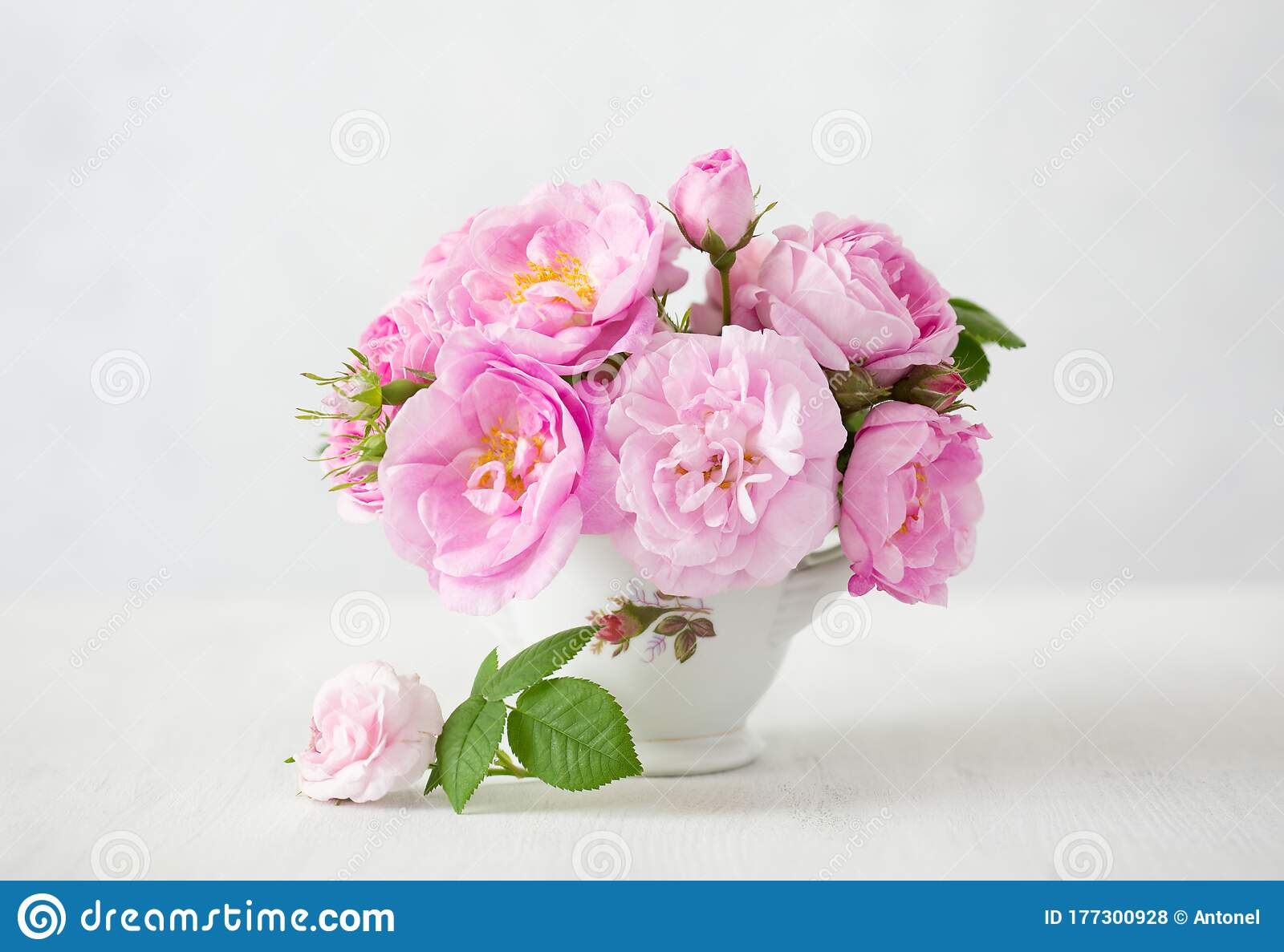 Small Light Pink Bouquet Of Roses In Porcelain Vase Against Of Pale Grey Background Shallow Depth Of Field Selective Focus Stock Photo Image Of Focus Gray 177300928