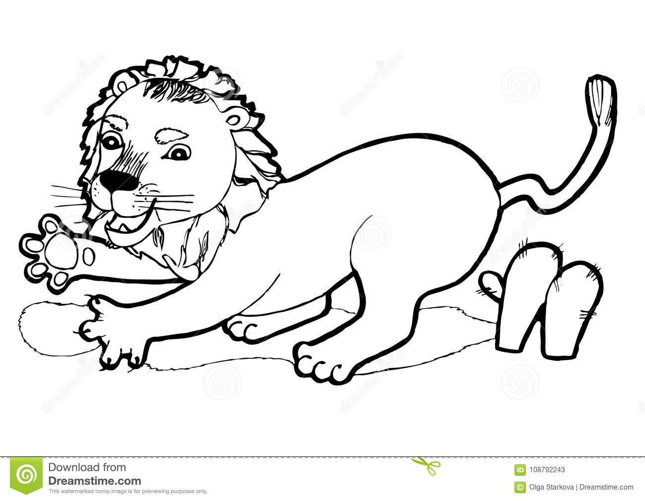 Small Lion, Colouring Book,black And White Version Illustration ...