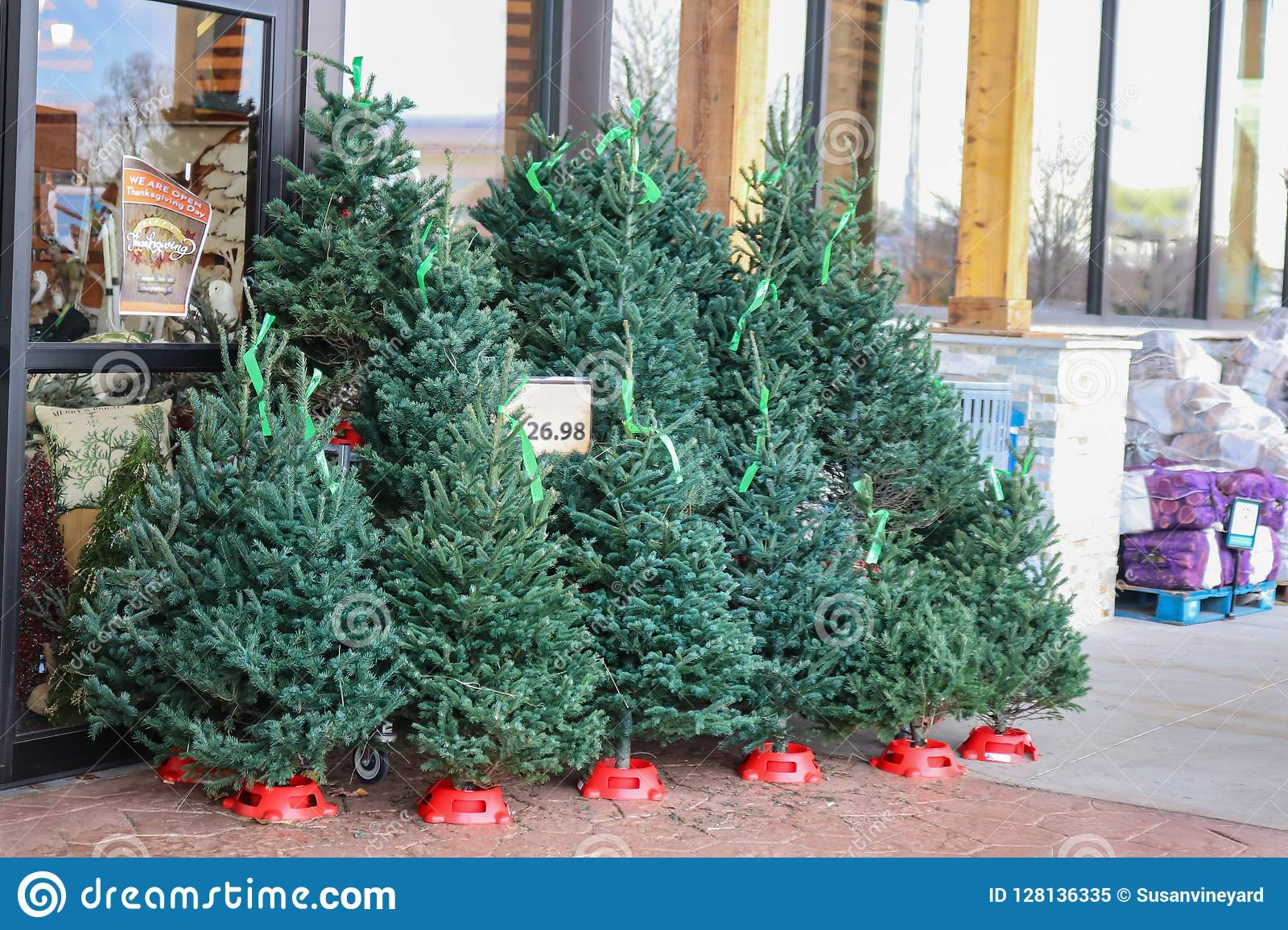 Christmas Trees For Sale.Small Live Christmas Trees For Sale Outside A Us Grocery