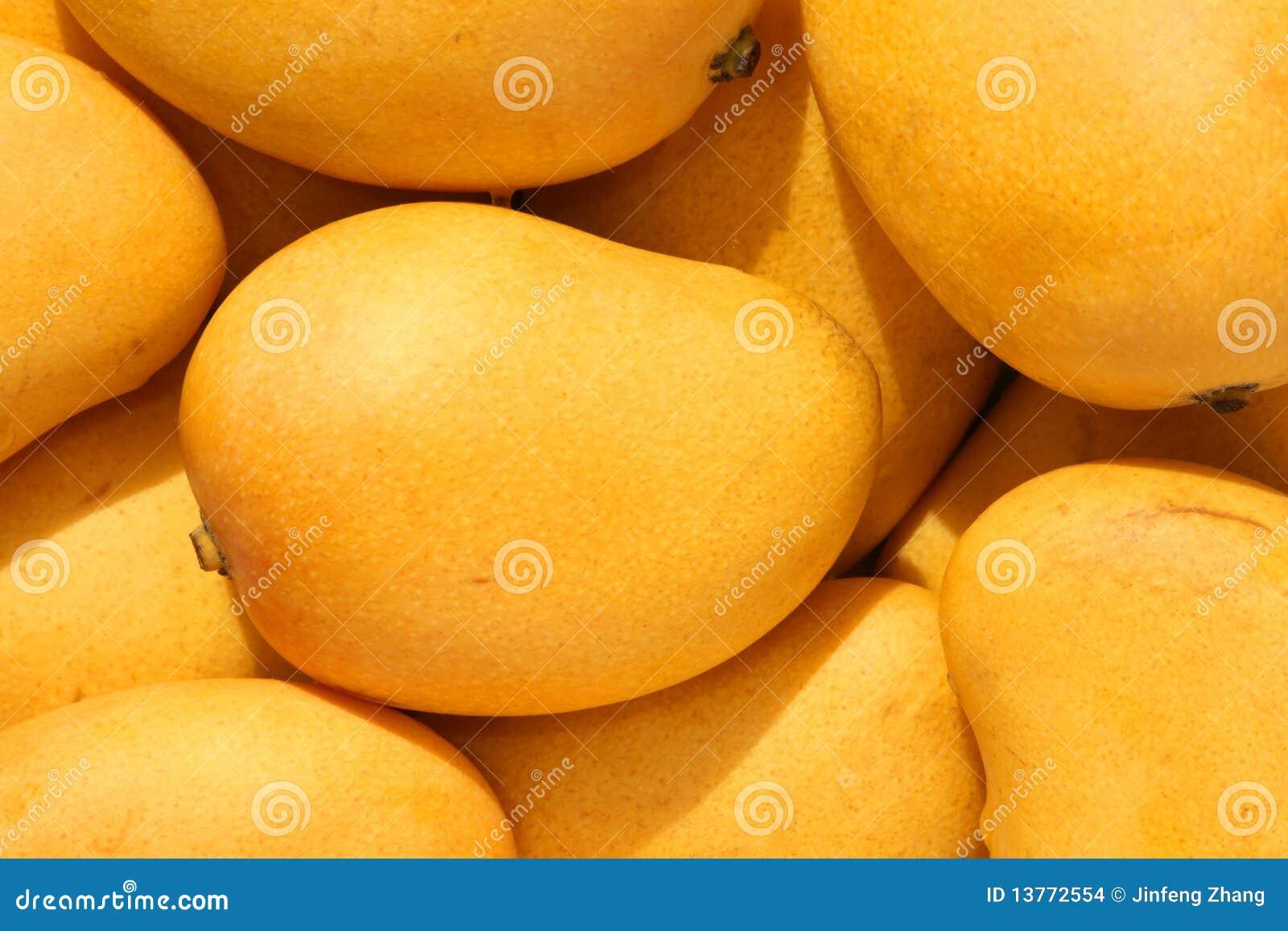 Small Mango Stock Images Image 13772554
