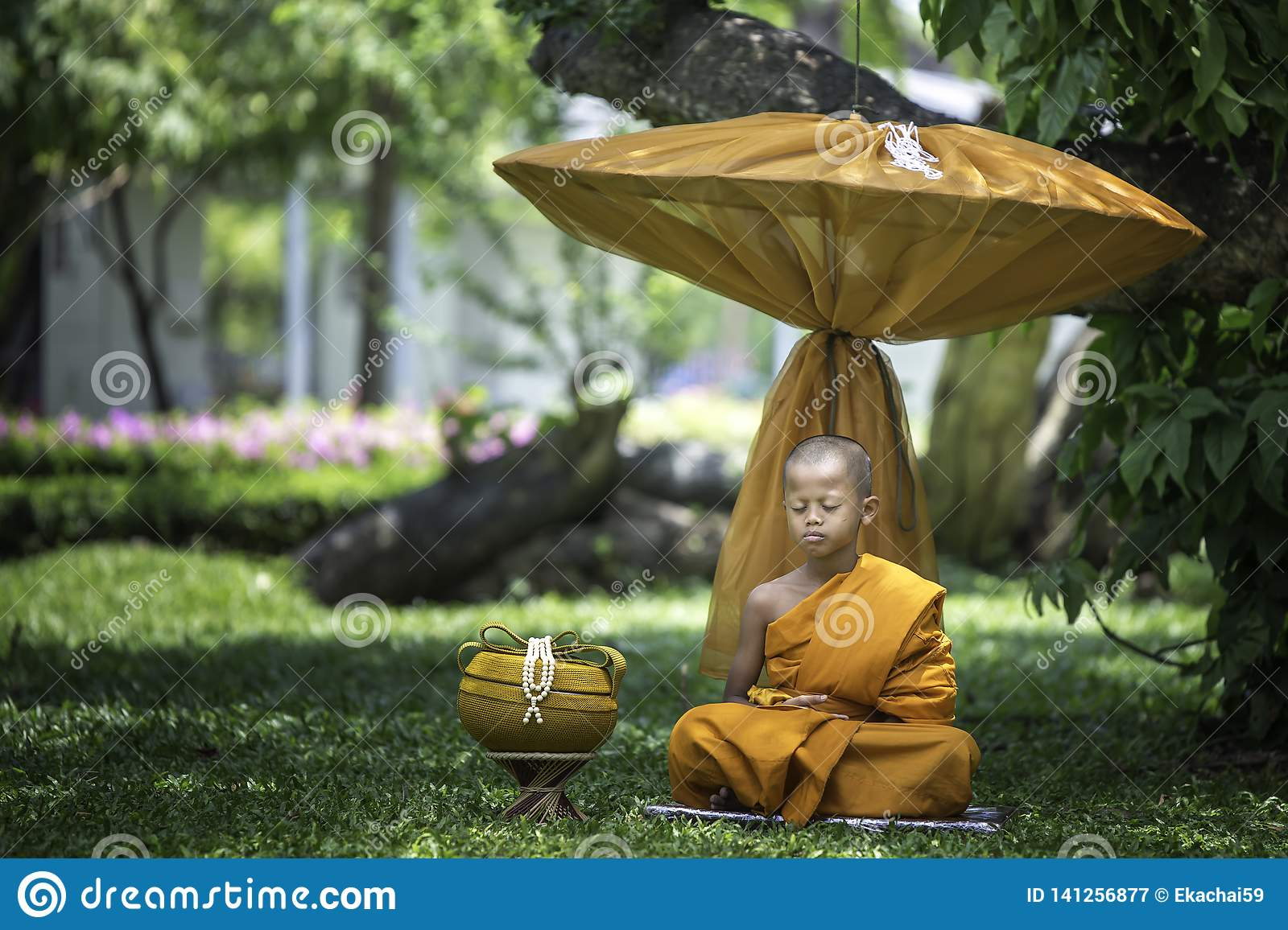 A small novice is meditating under the tree.