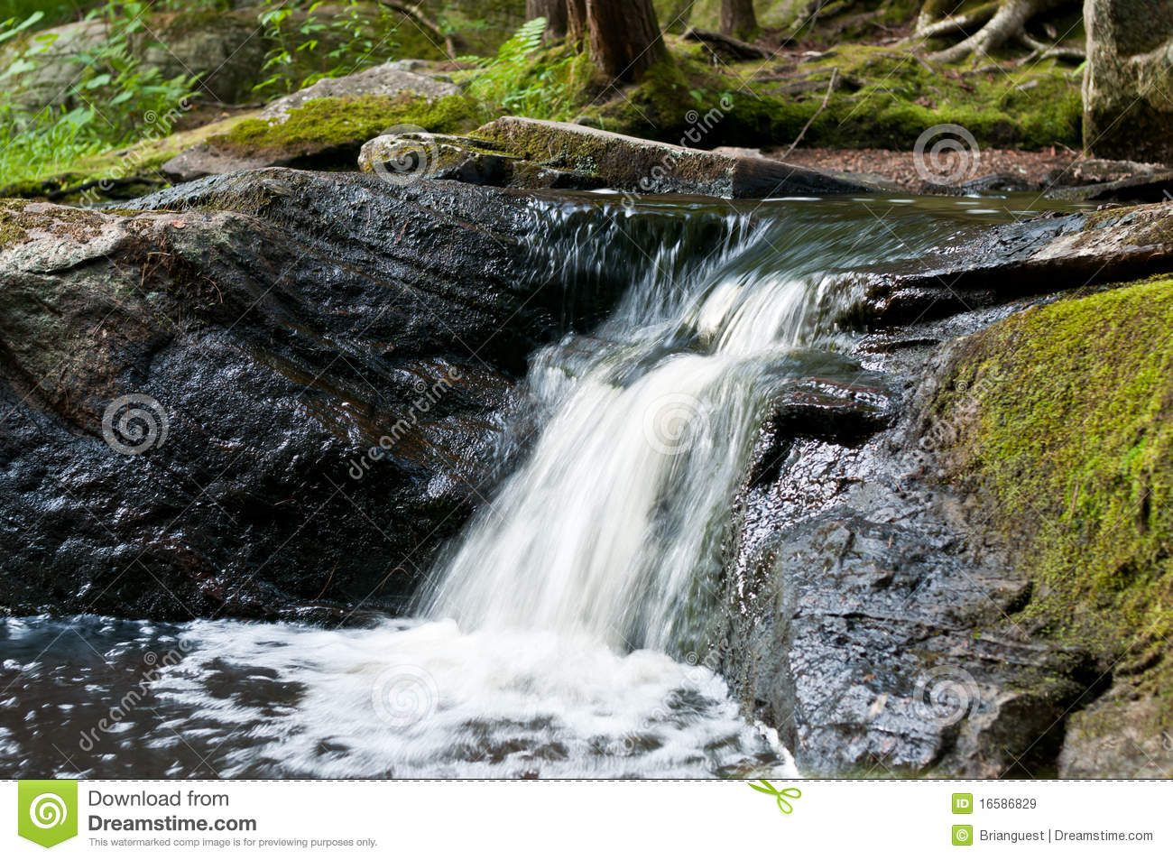 Small Ontario Waterfall Royalty Free Stock Images Image 16586829