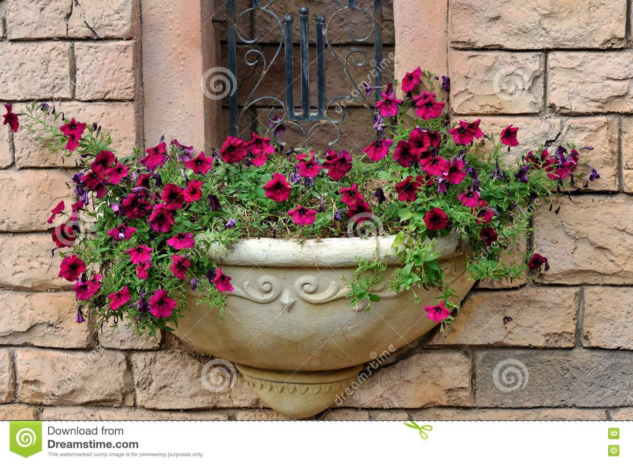 Small parterre on building external wall royalty free for Parterre 3d