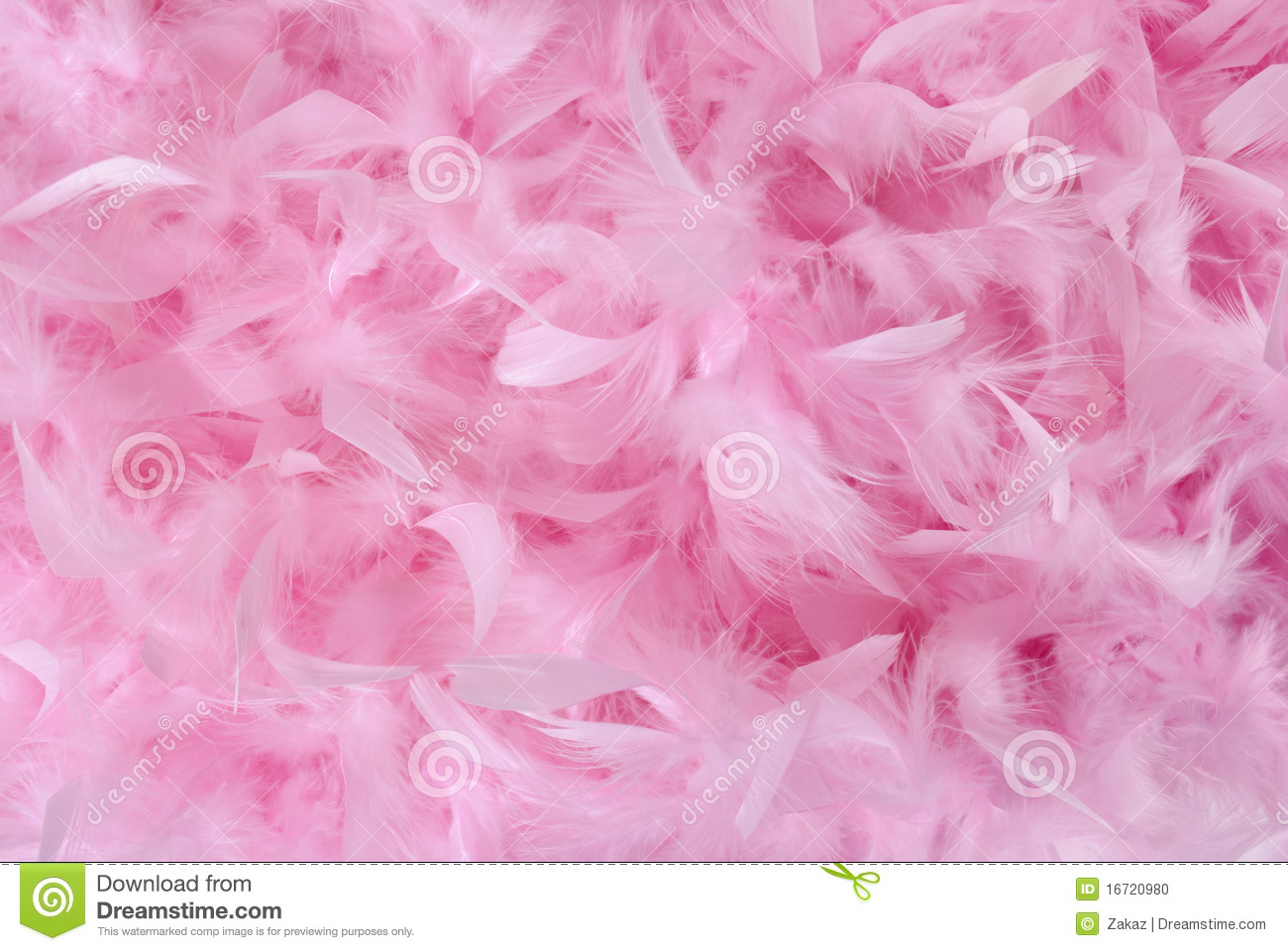 Small Pink Feathers In Pile  Texture Stock Photo Image