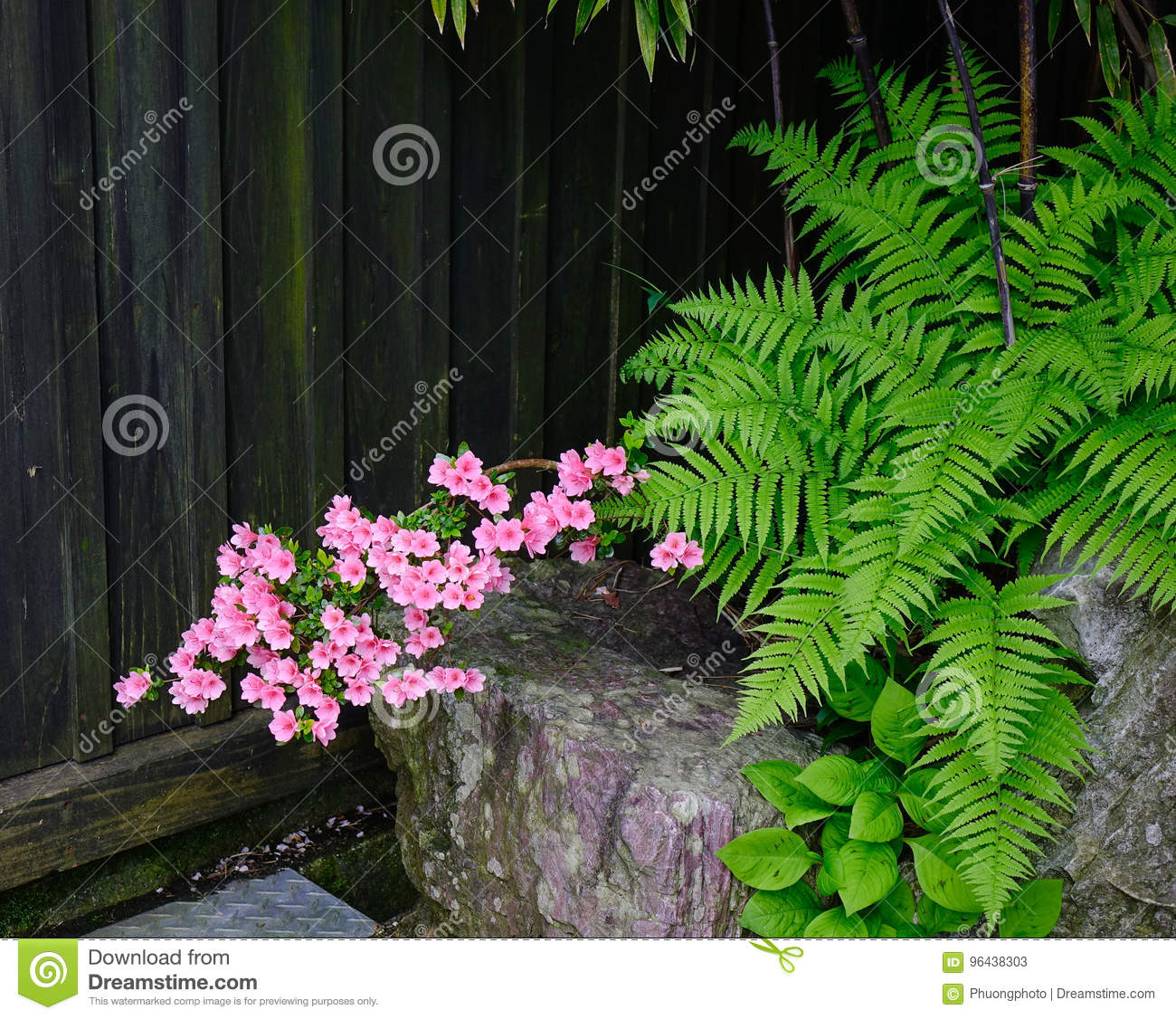 Small Plants For Decorations At Garden