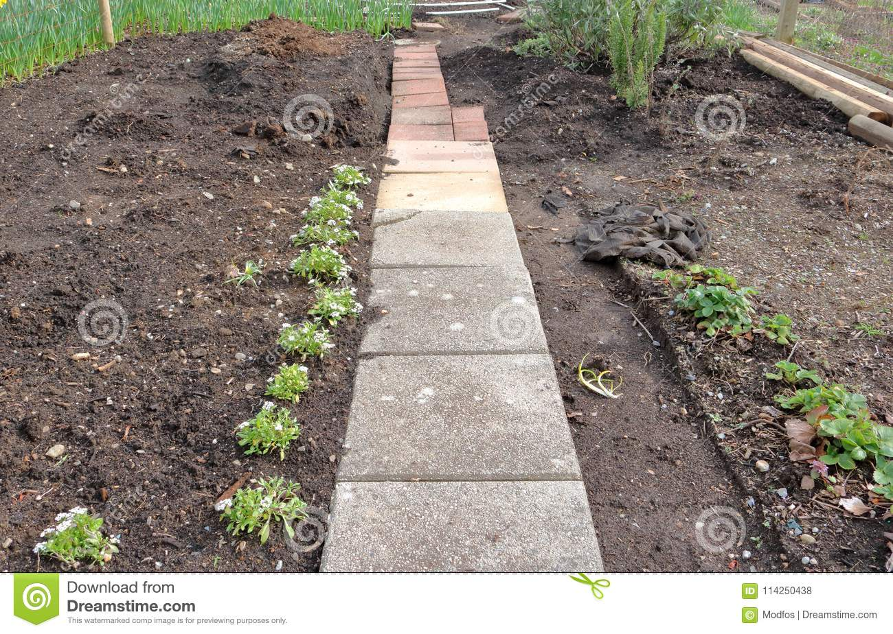 Download Starting A Basic Backyard Garden Stock Photo   Image Of Earth,  Pathway: 114250438