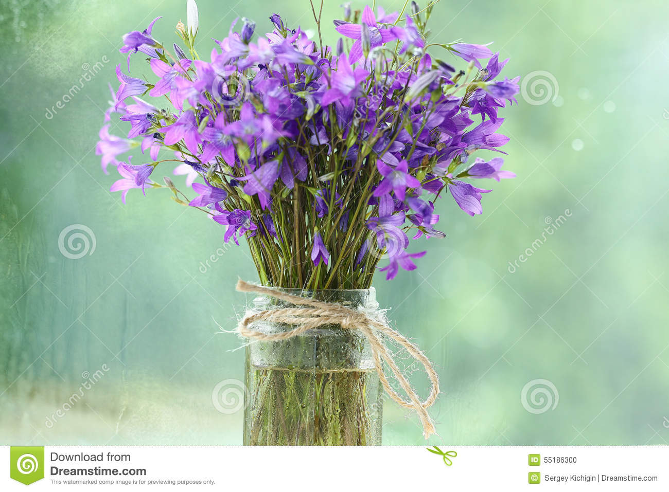 Small purple flowers bouquet stock photo image of flower bloom small purple flowers bouquet izmirmasajfo Images