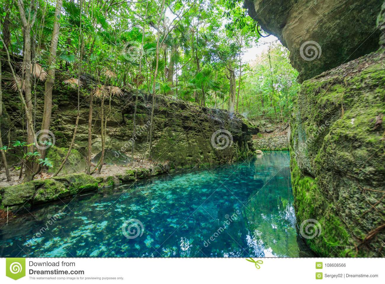 Download Blue River In Xcaret Mexico Stock Photo