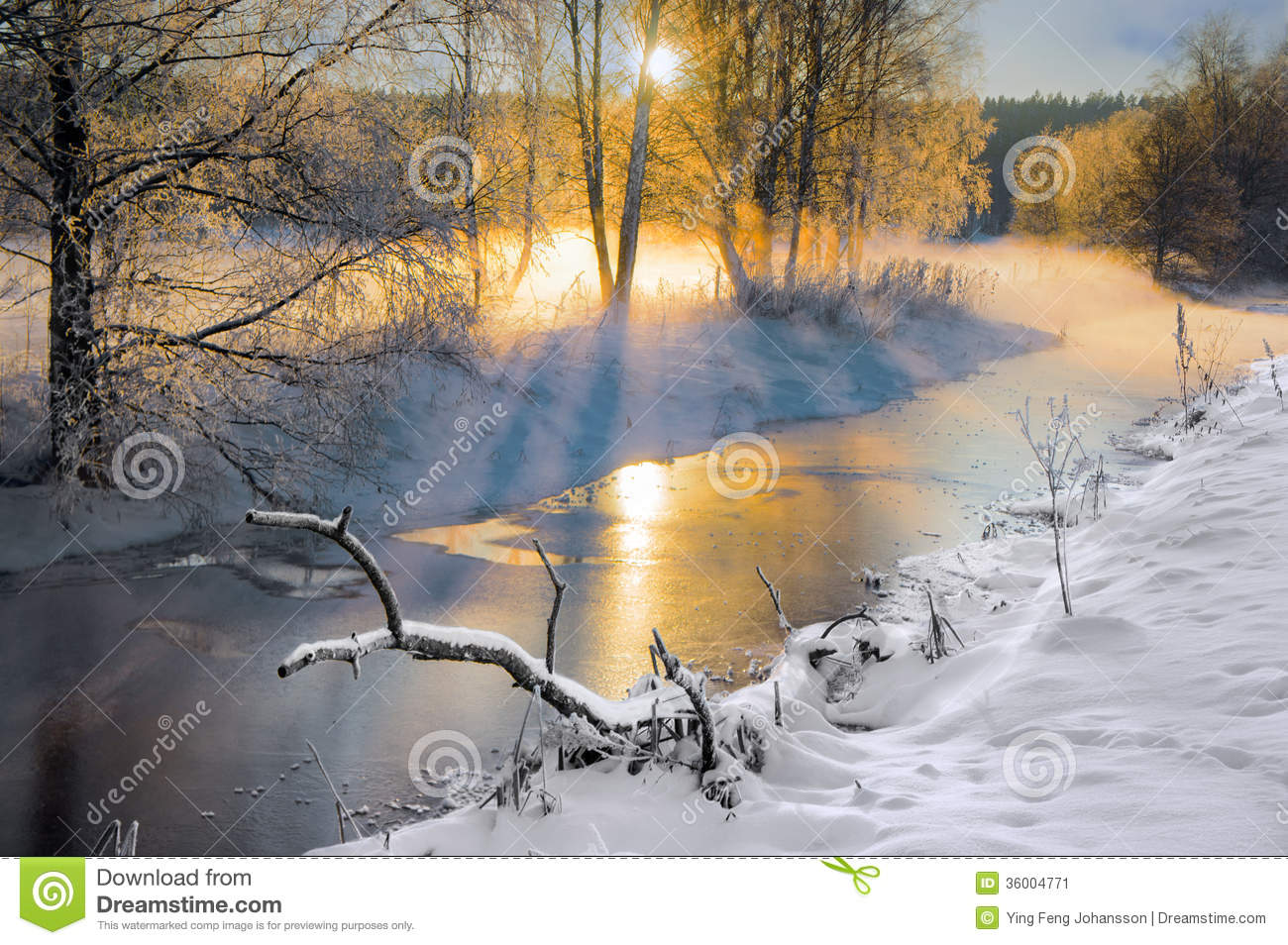 Birch trees in the winter stock photo image 2170700 - Small River In Winter Stock Image