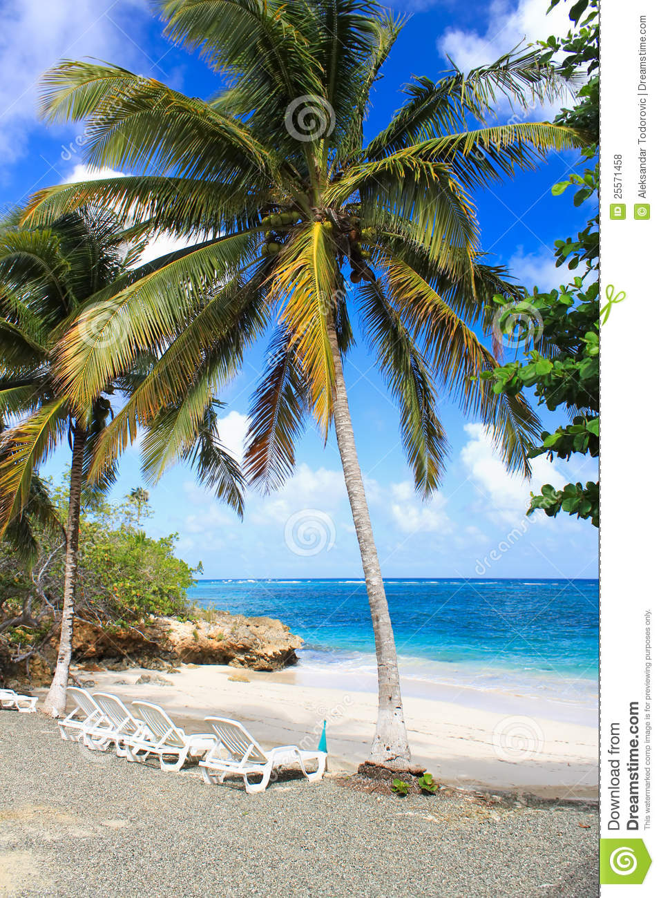 small romantic tropical sand beach cuba royalty