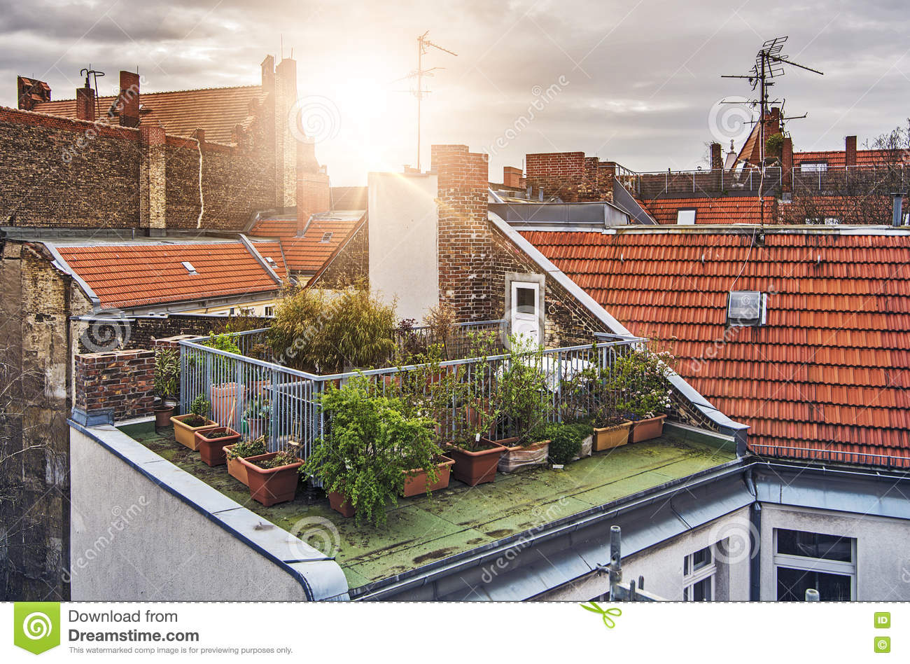 6 064 Rooftop Garden Photos Free Royalty Free Stock Photos From Dreamstime