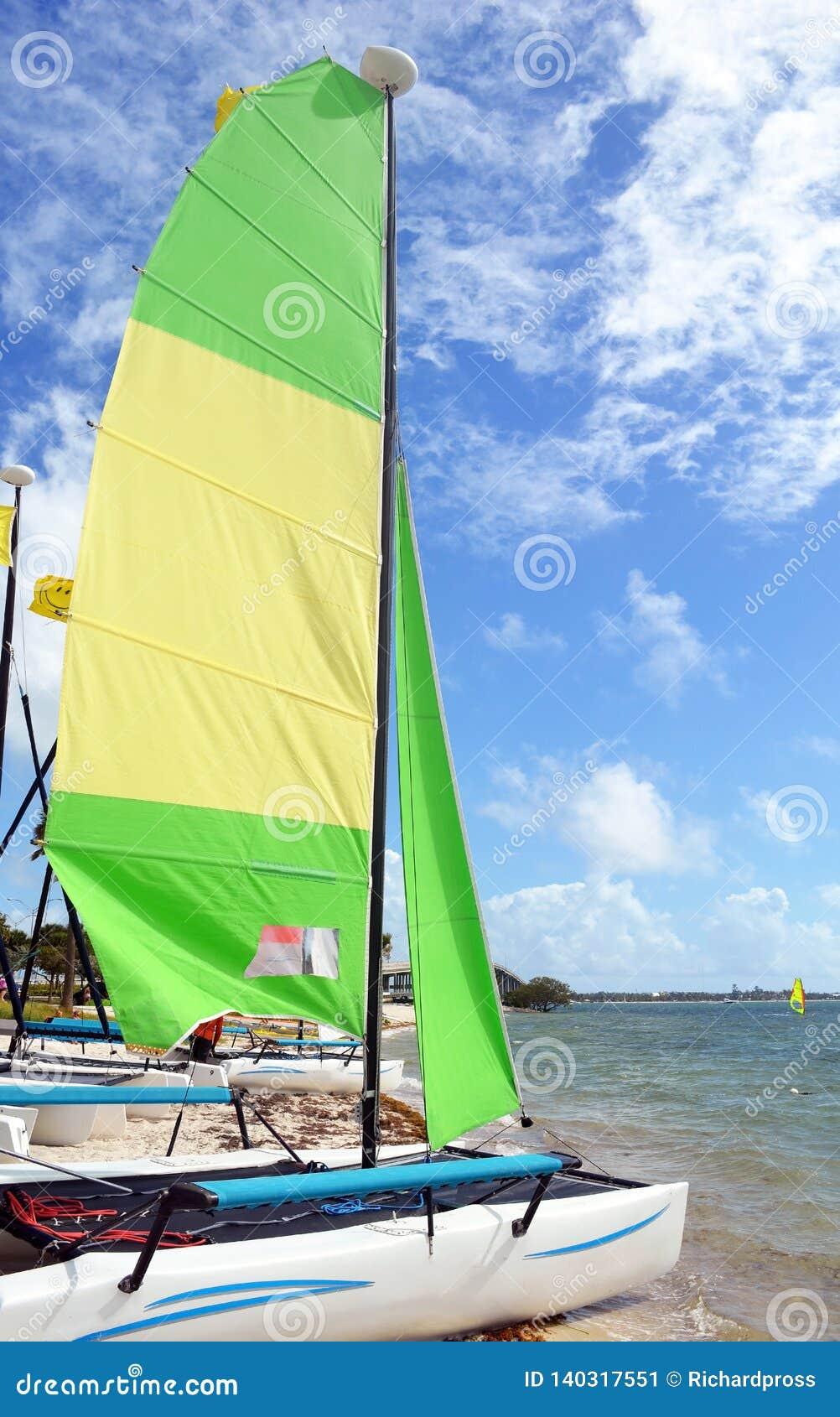 Small Sailing Catamaran With Yellow And Green Sails Stock Image