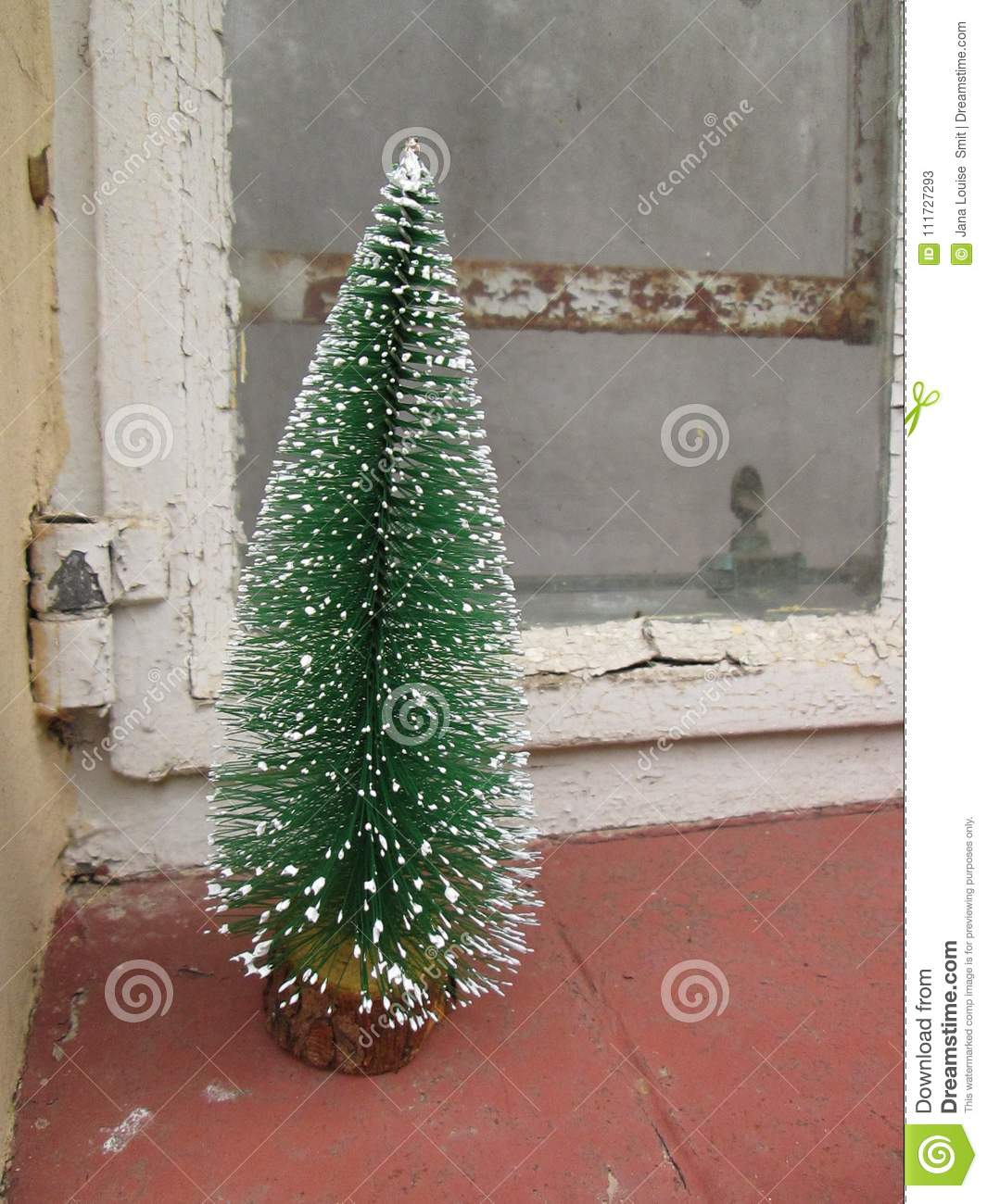 Pagan Christmas Tree.A Small Snow Covered Christmas Tree Stock Image Image Of