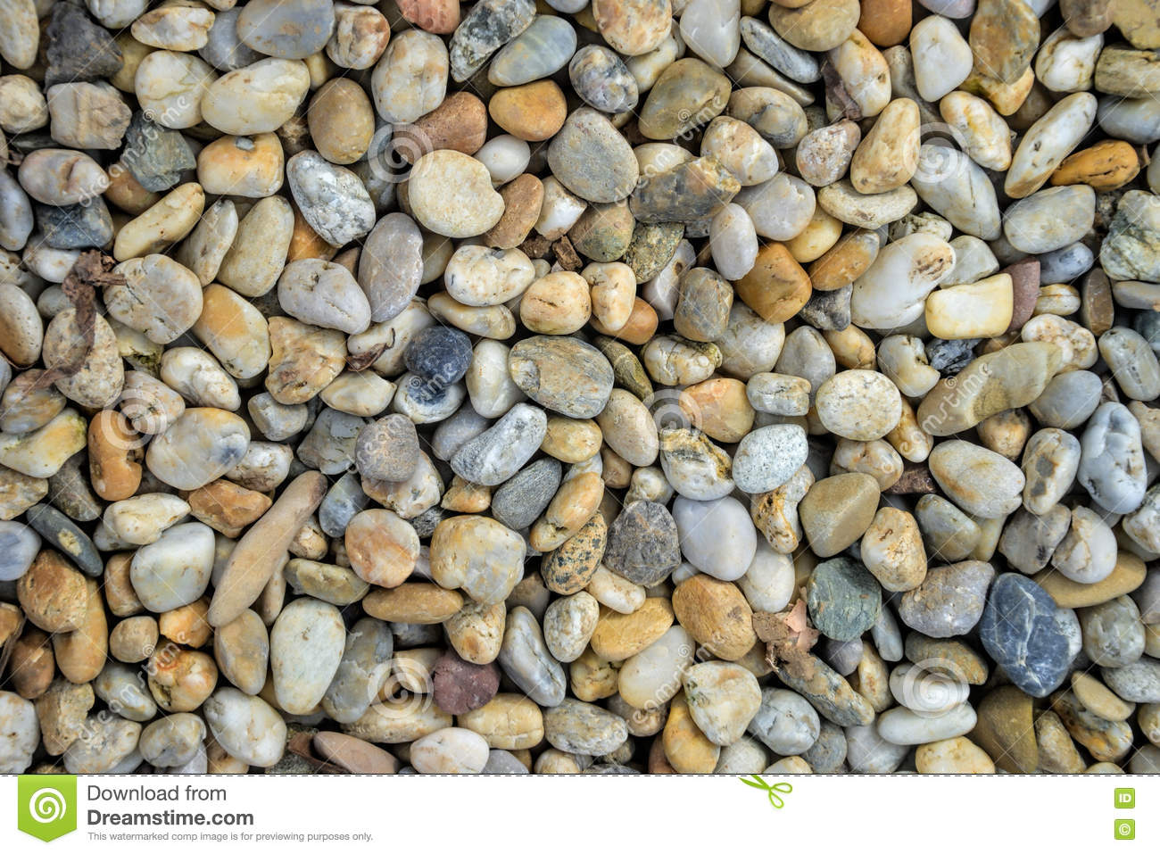 Smooth shaped white stones surface texture background stock photo - Small Stones Gravel Texture Naturally Pebble Textured Background Garden Decor Stock Image