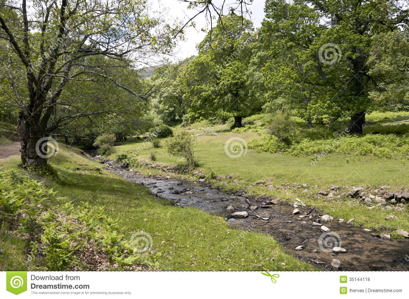 Small stream in Iruelas Valley Natural Park, Avila, Spain.