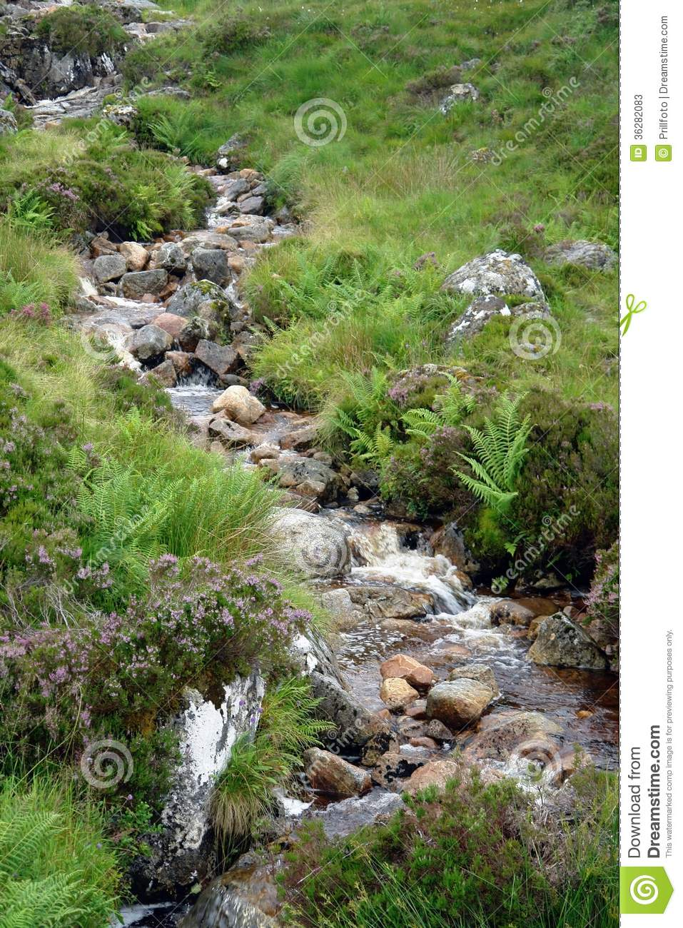 Photos Of Small Living Rooms Decorated: Small Stream With Pebbles Stock Photos