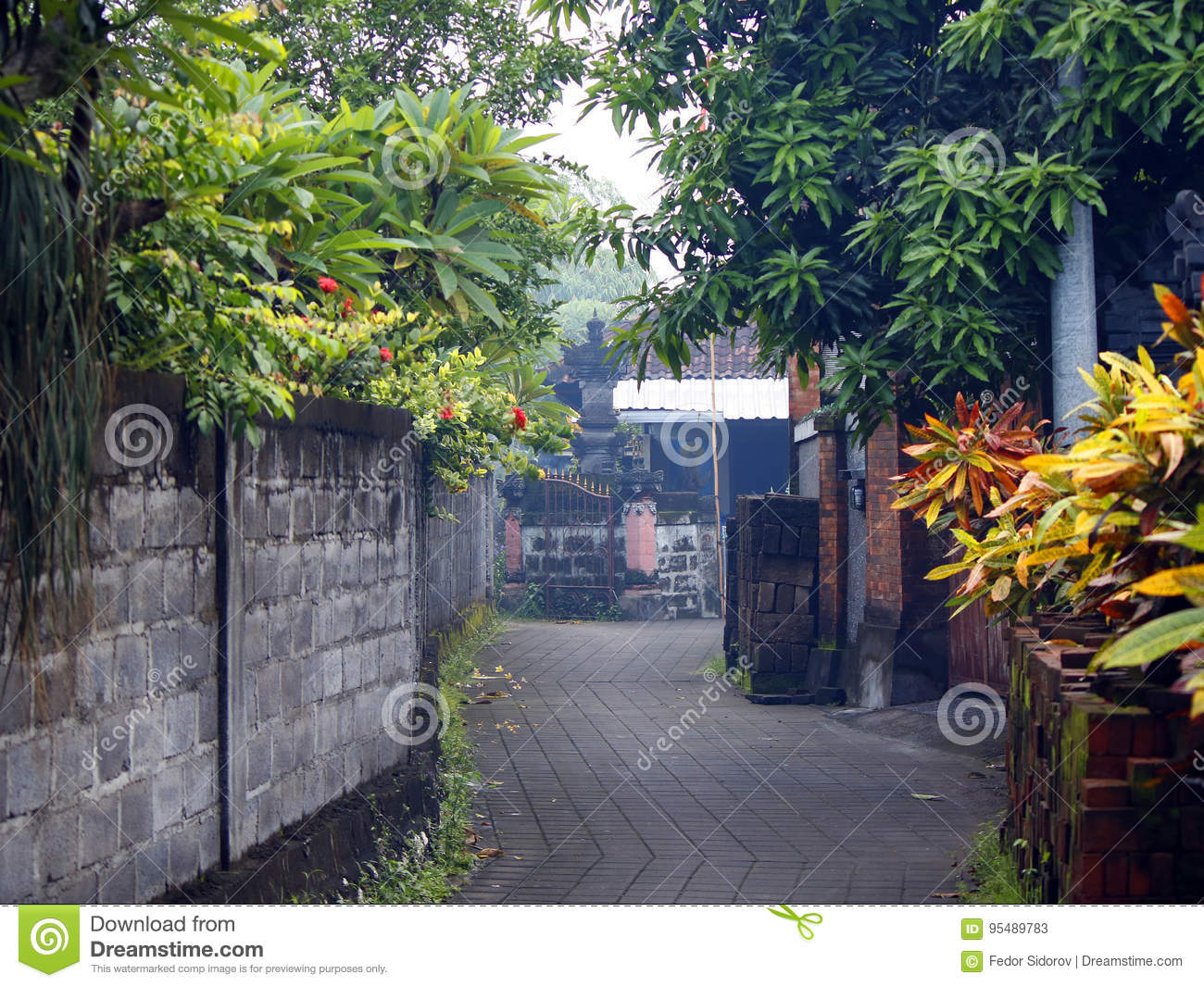 Small Street In A Bali Village Editorial Stock Photo Image Of Architecture Exotic 95489783
