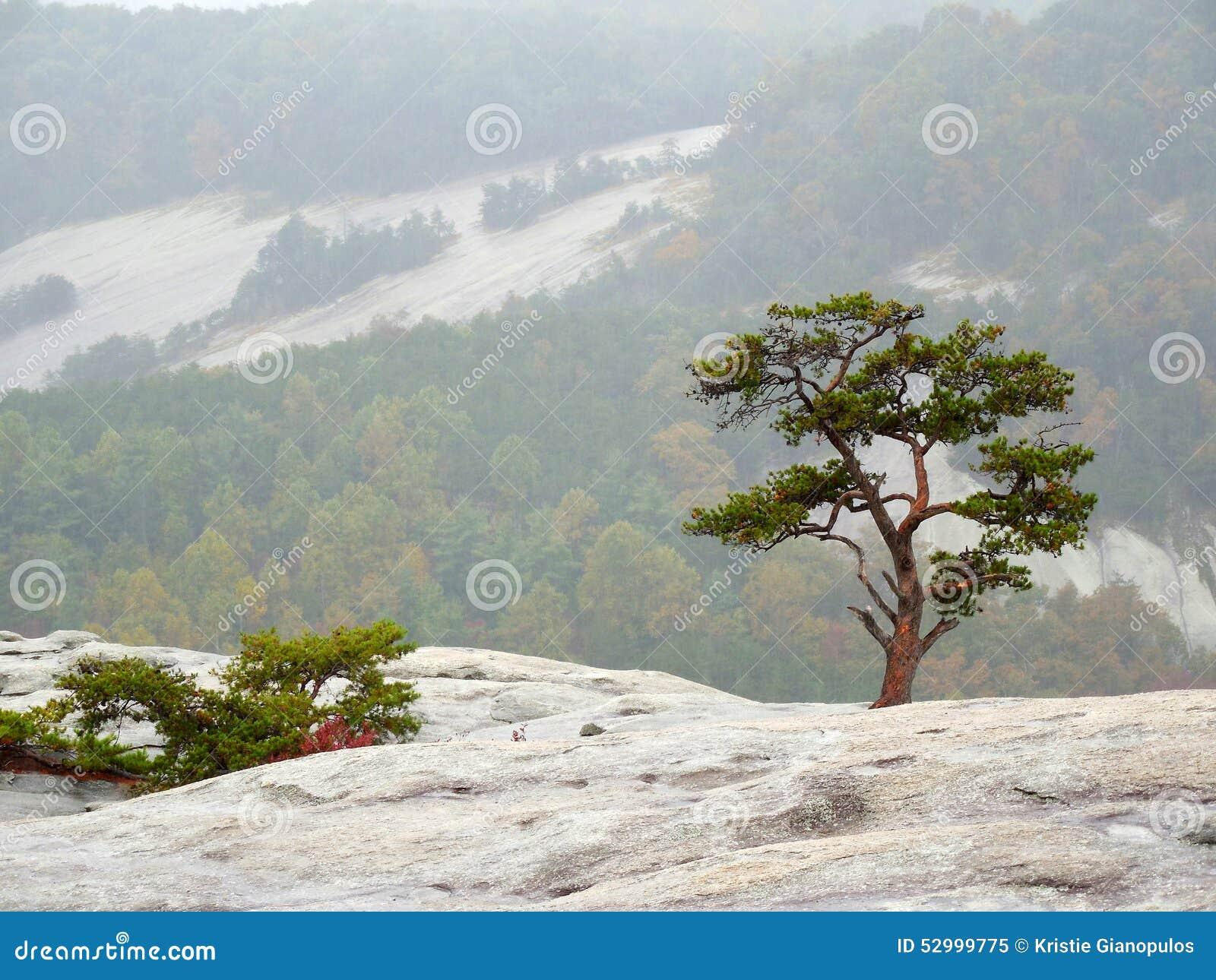 appalachian blue ridge mountains wallpaper - photo #40
