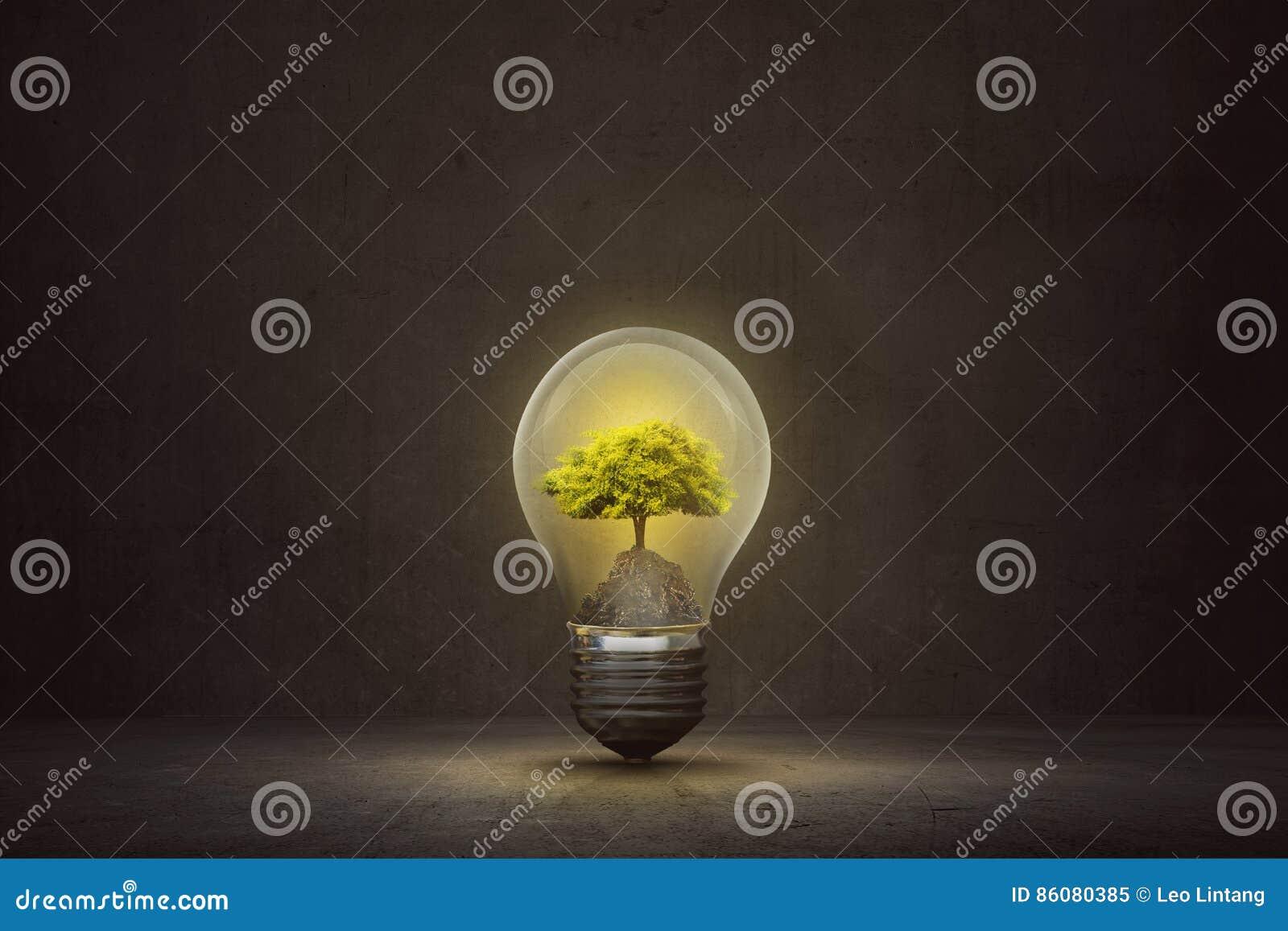 Dark room with light bulb - Small Tree Inside Light Bulb On The Dark Room