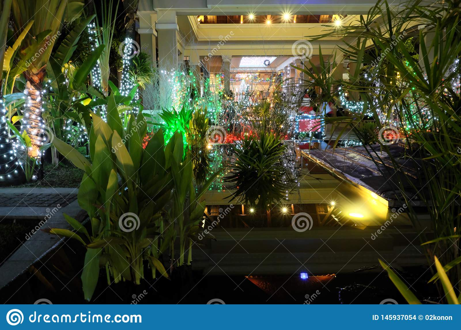 Small Tropical Garden, Decorated With Christmas ...