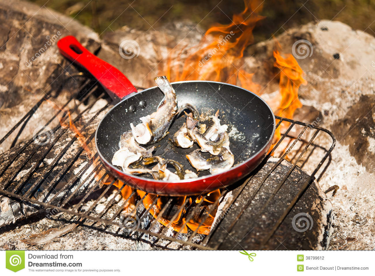 Small Trouts Cooking on a Campfire