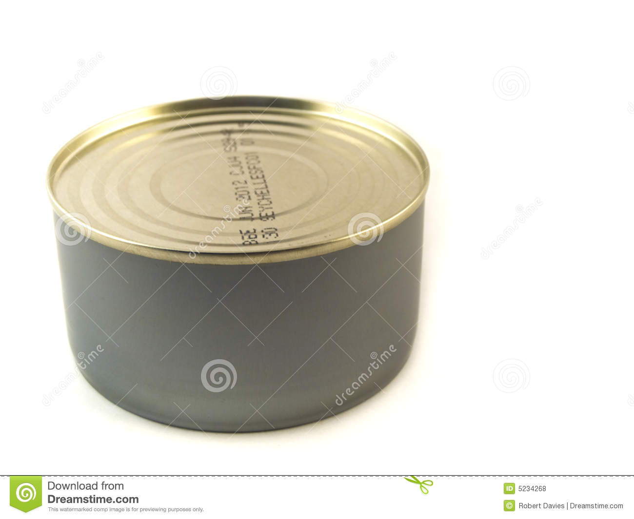 Small Tuna Tin Can on White Background