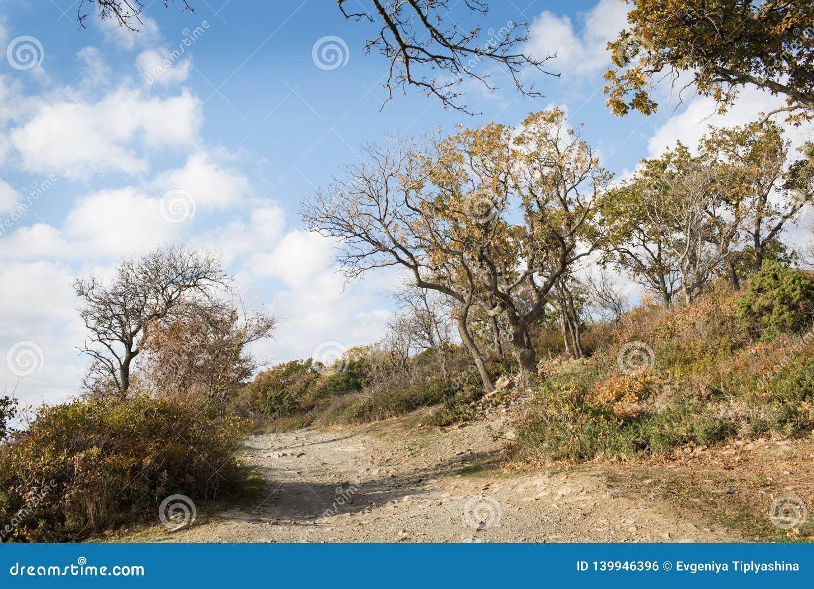 Small Utrish, Caucasus, Russia