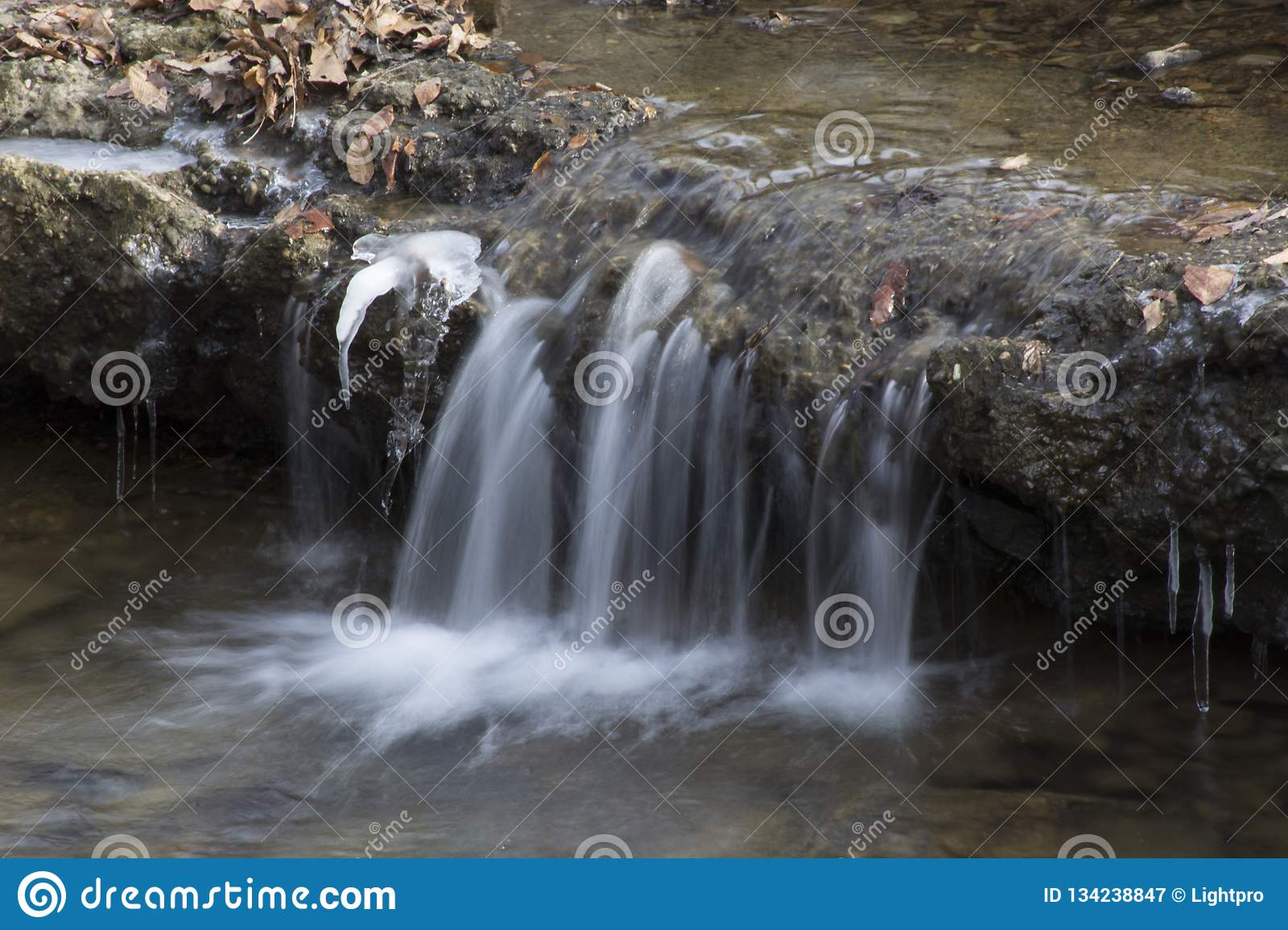 Small waterfall in forest stream