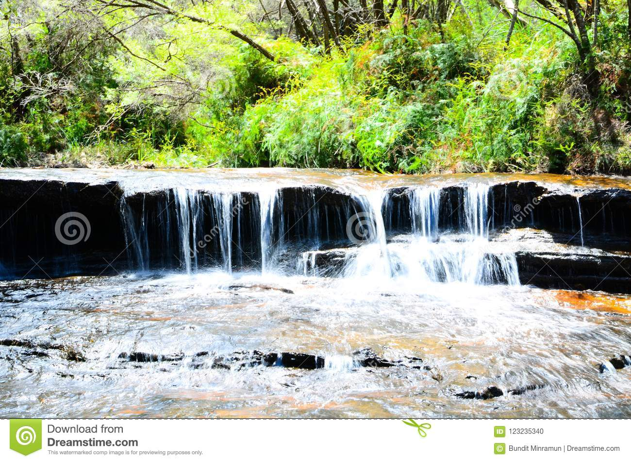 Small waterfall in the rainforest at Wentworth Falls, New South Wales, Australia.
