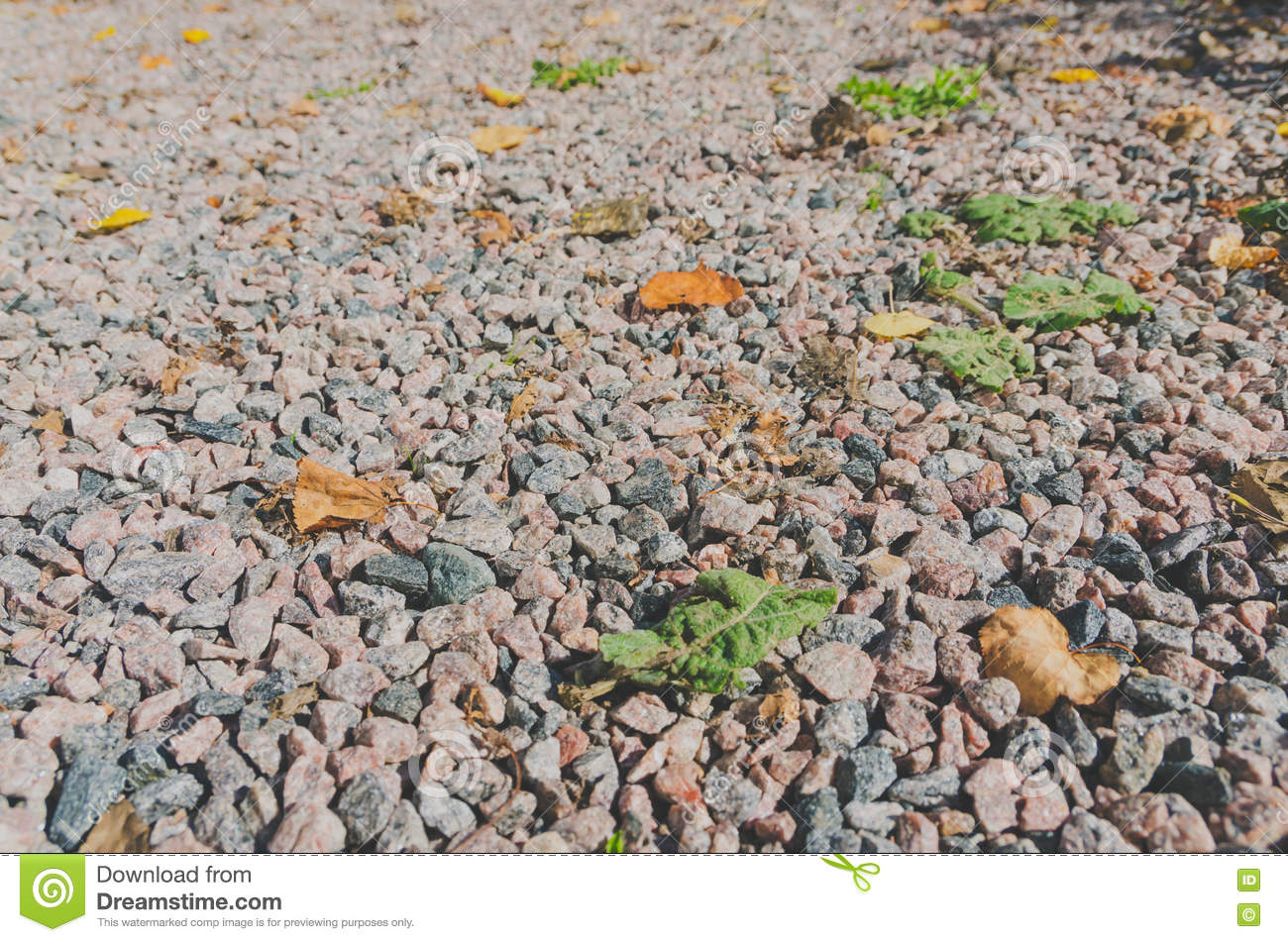 Rocky White Granite : Granite gravel stone on the floor outdoor ground royalty