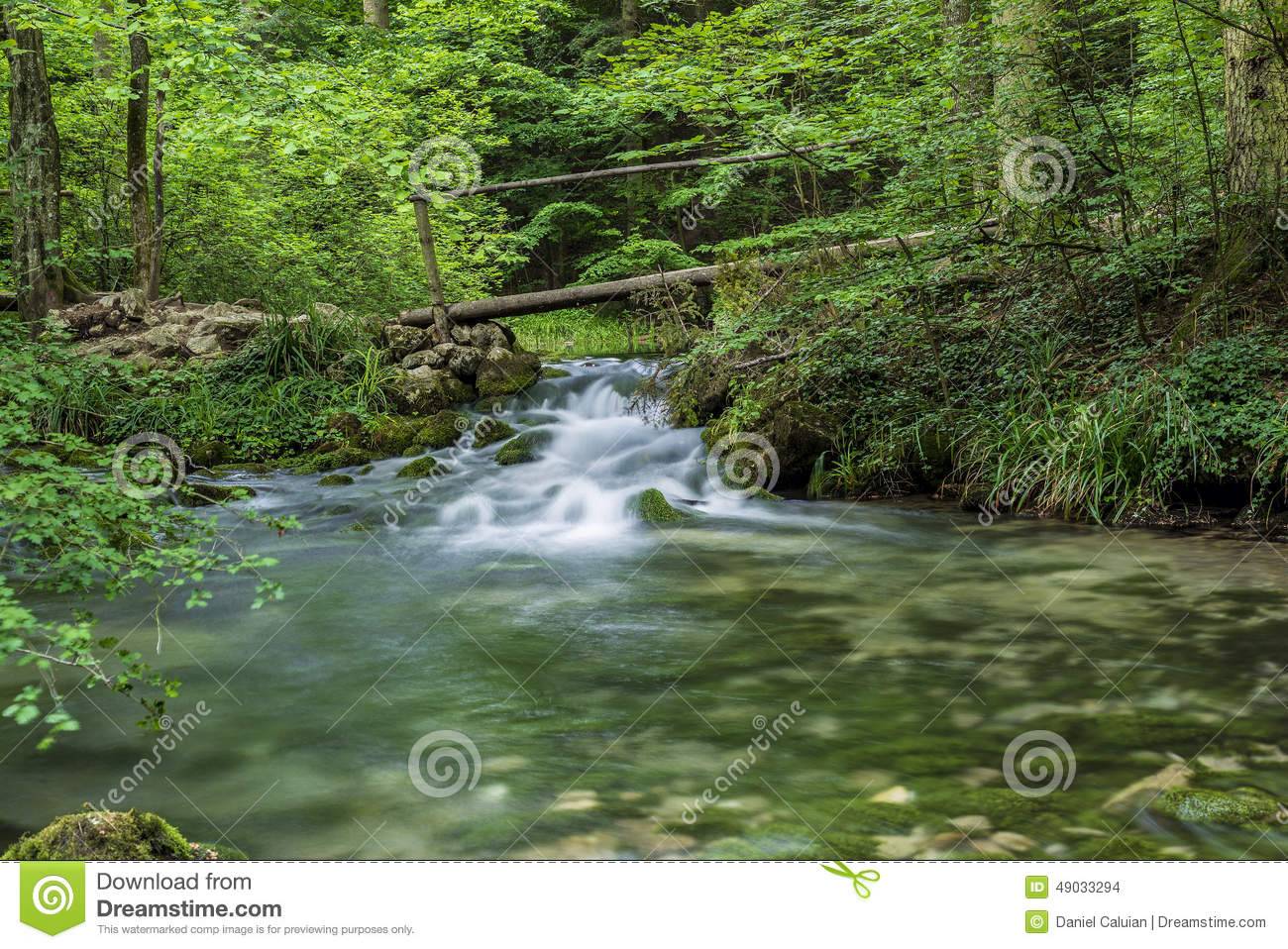 Small Wooden Bridge Over Beusnita River In The Woods Stock