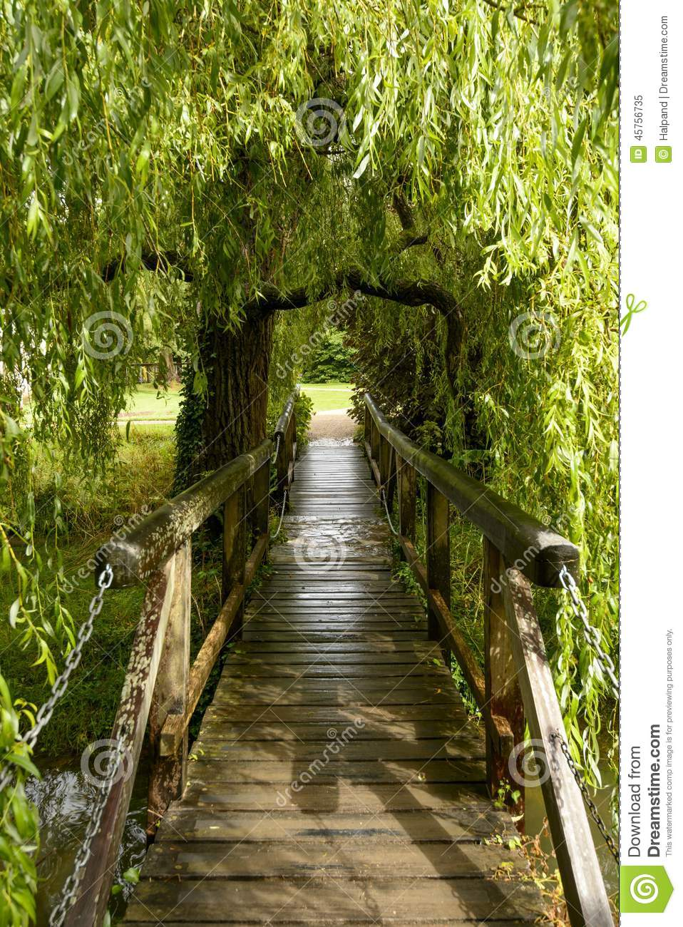Small Wooden Bridge Under Willow Tree At Bishop Palace