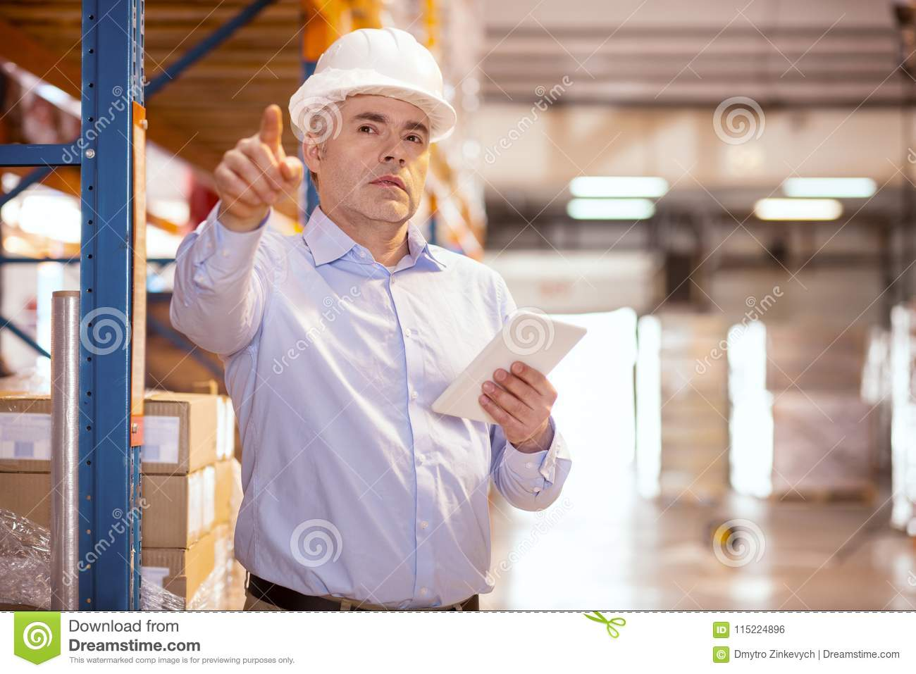 Smart Experienced Manager Being At Work Stock Photo - Image of