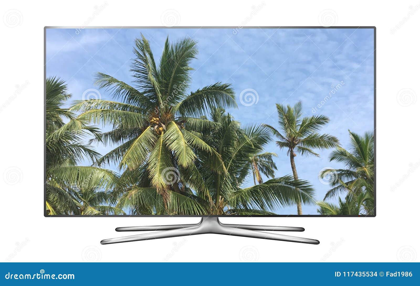 Smart-Fernsehen mit Palmen gegen Bild des blauen Himmels