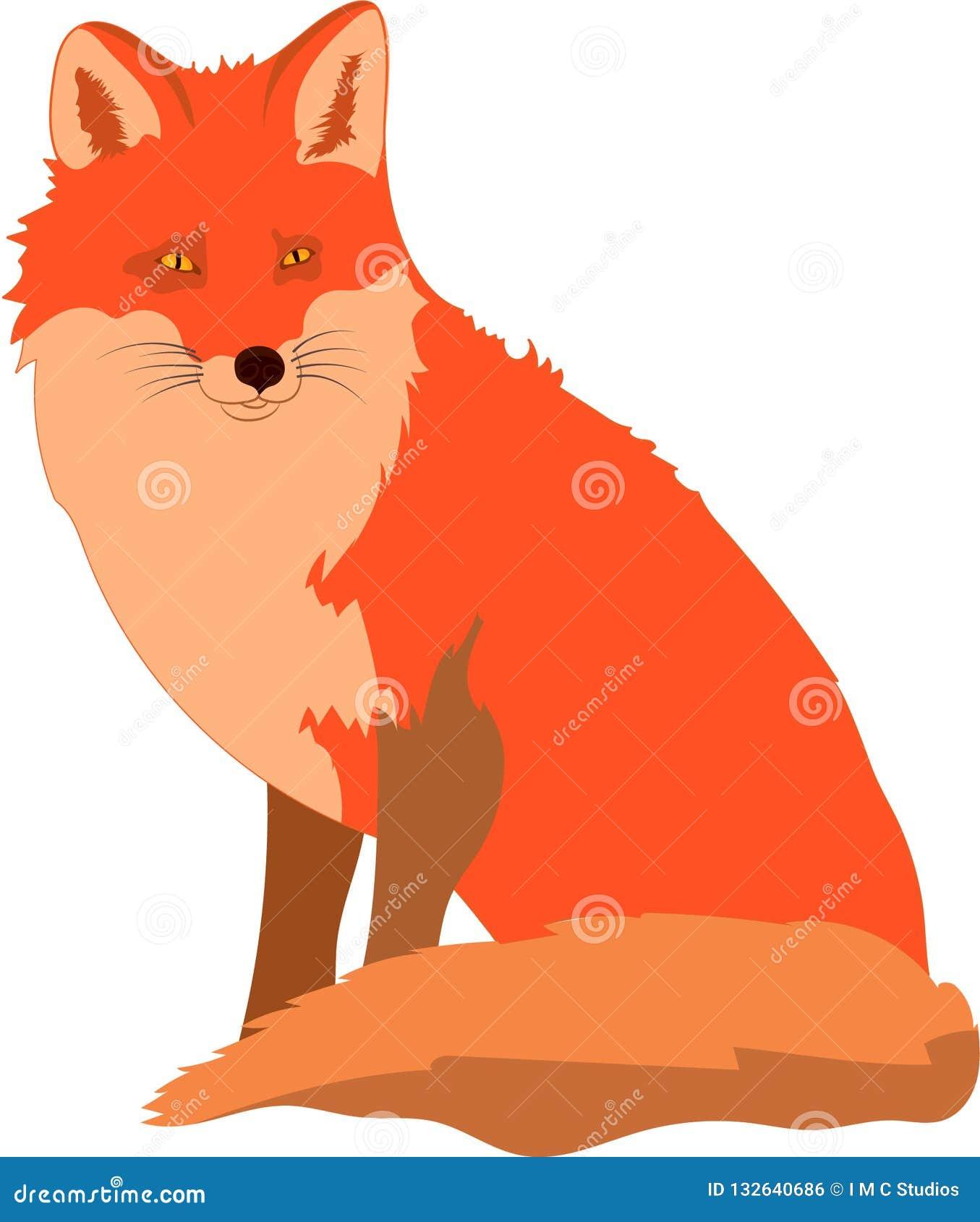 Smart gullig röd räv som ser och betalar uppmärksamhet
